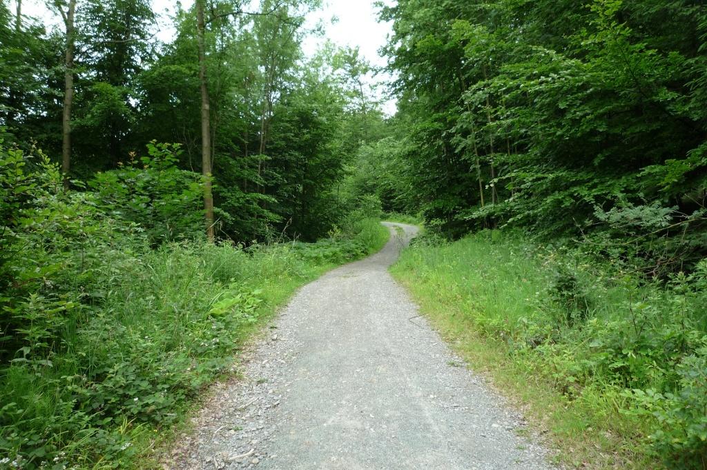 Wanderweg in Richtung Velmerstot