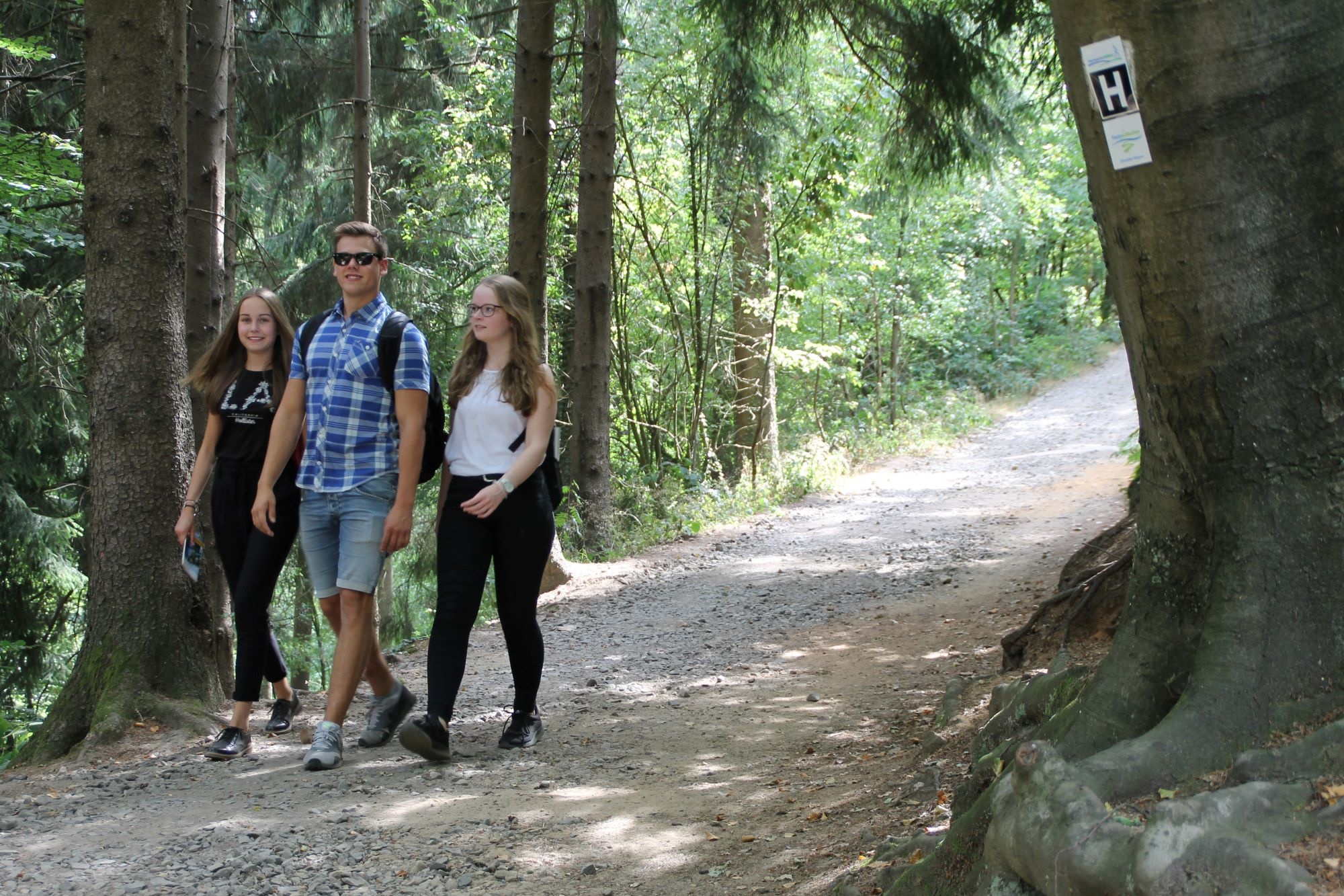 Wandern an den Dörenther Klippen