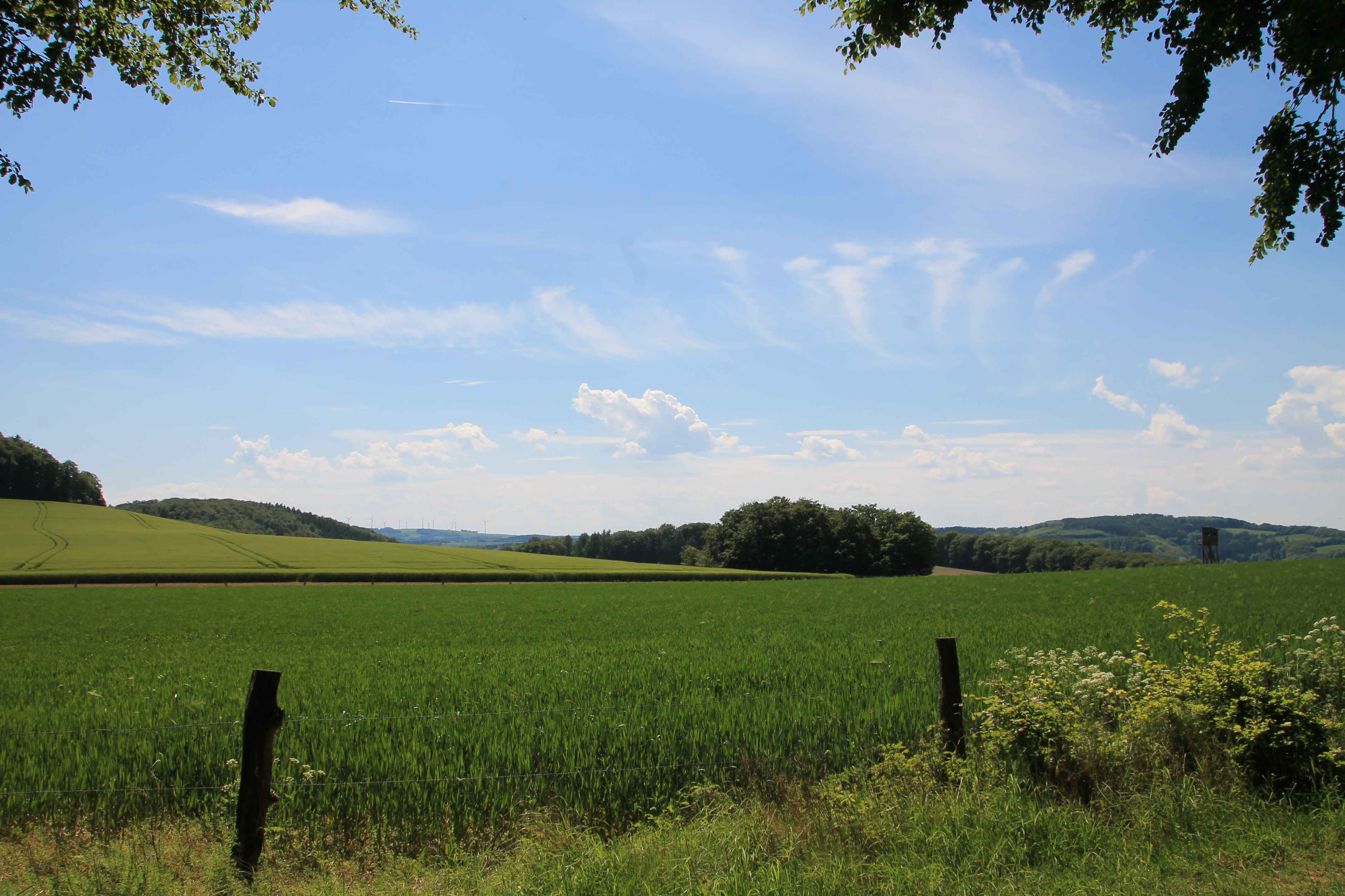 Landschaft bei Silixen