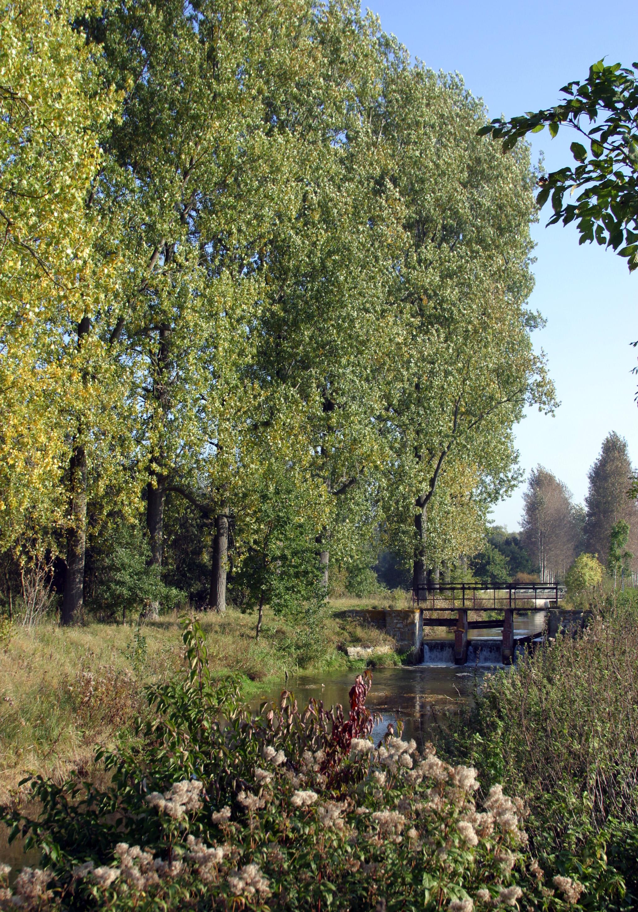 Boker-Heide-Kanal