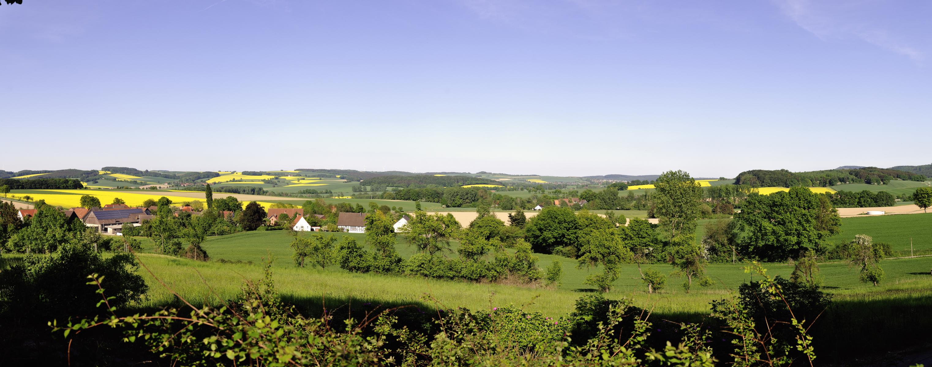 Barntrup_Sommersell_Panorama