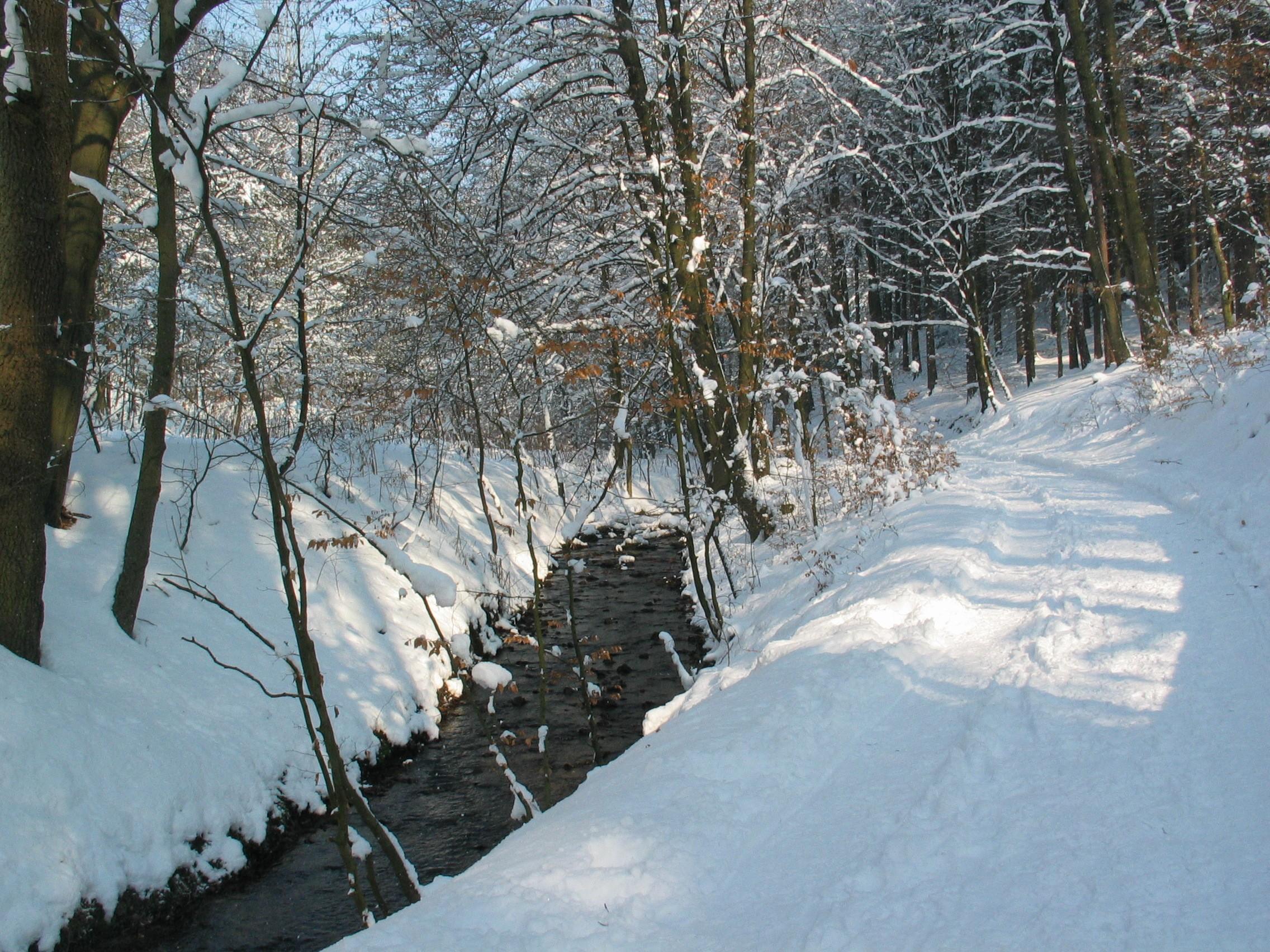 Schopketal Winter