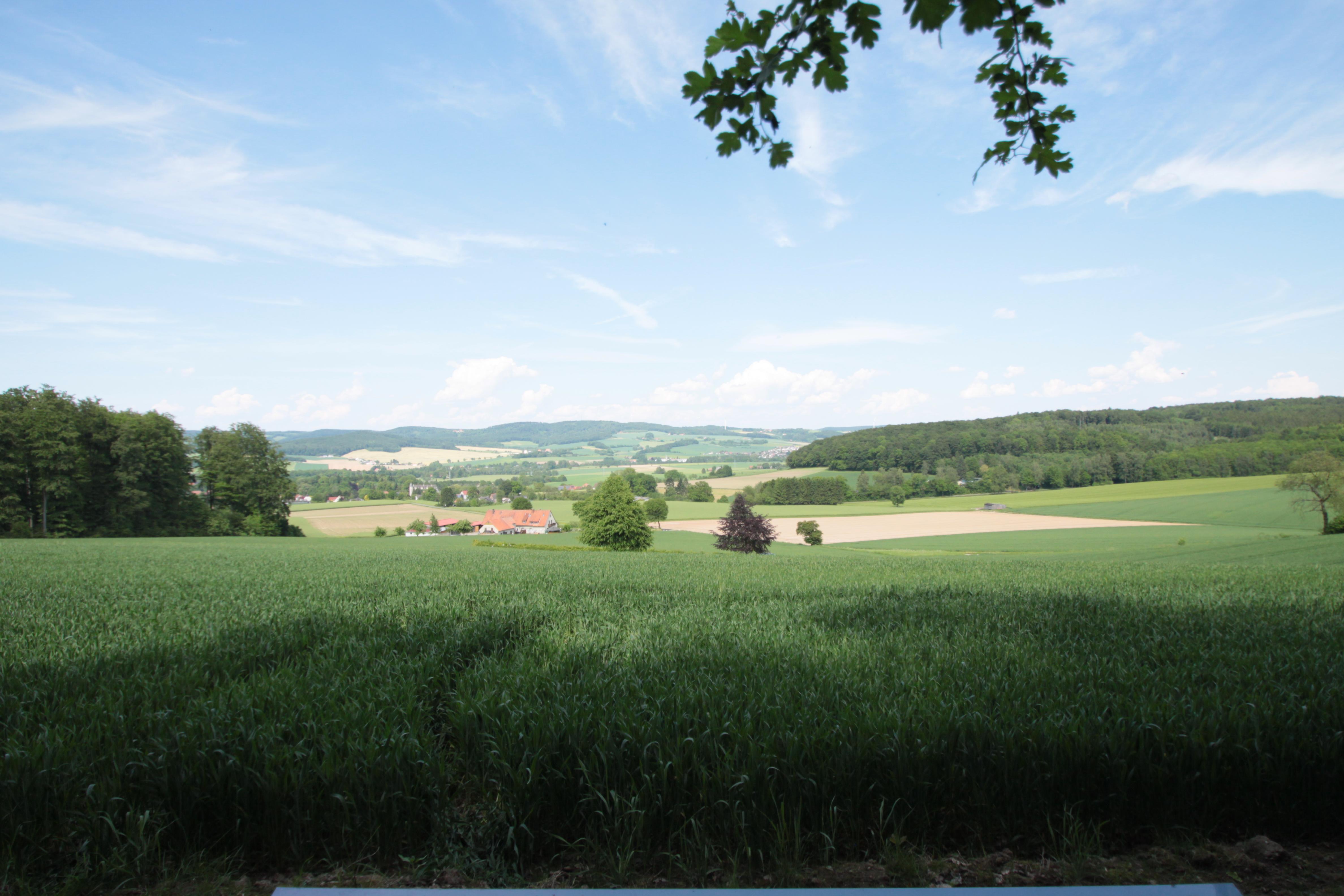 Aussicht am Sievertsberg