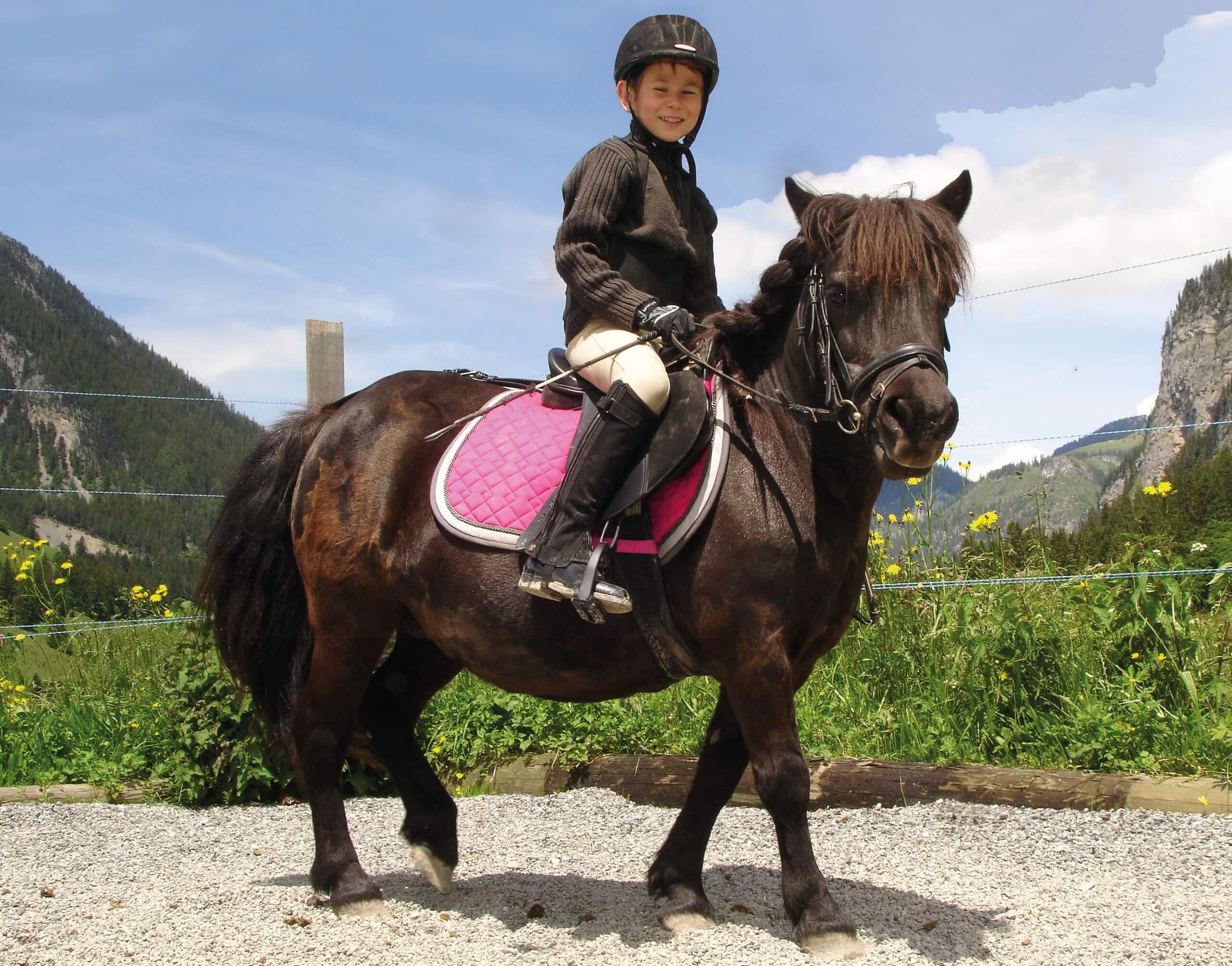 reithof-lanzelot-bruno-pony-reiten-sommer-reitplatz
