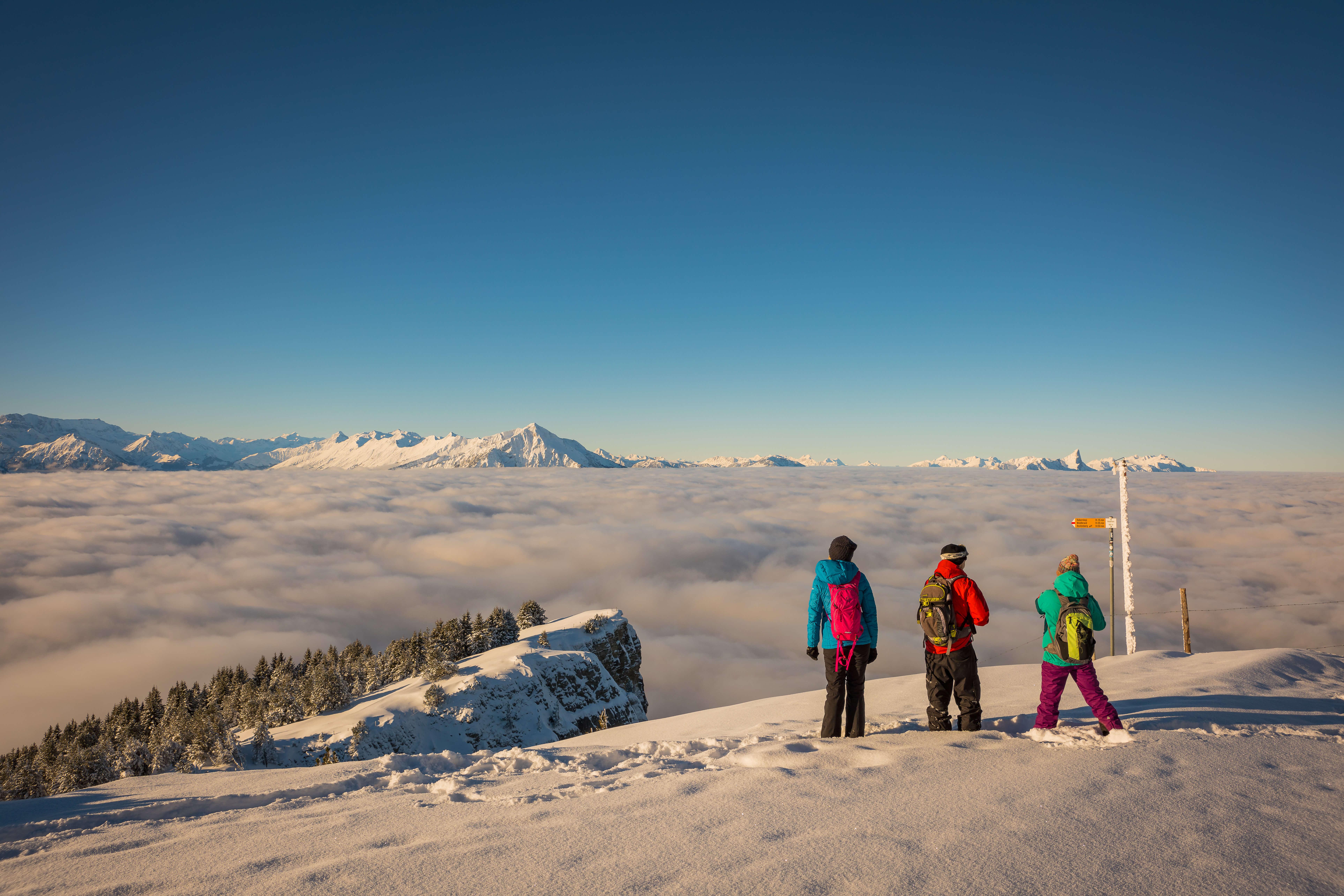 niederhorn-aussicht nebelmeer 2-beatenberg-winter.jpg