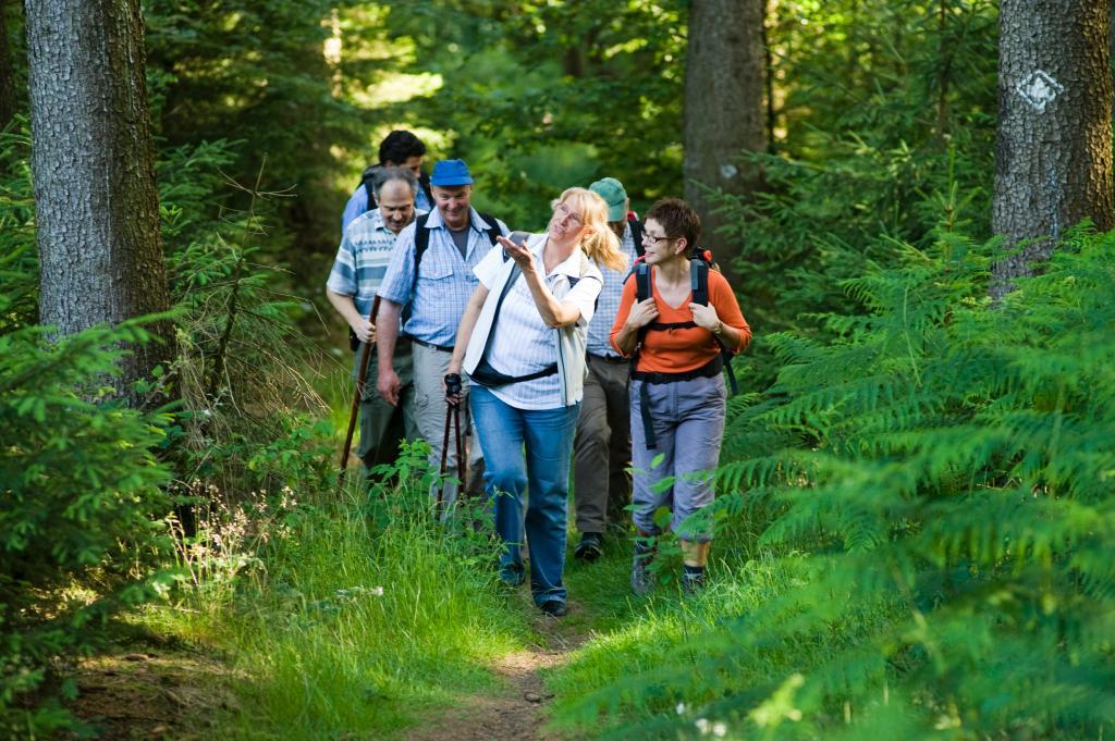 Der Ahornweg führt durch den waldreichen Süden des Naturparks im Osnabrücker Land