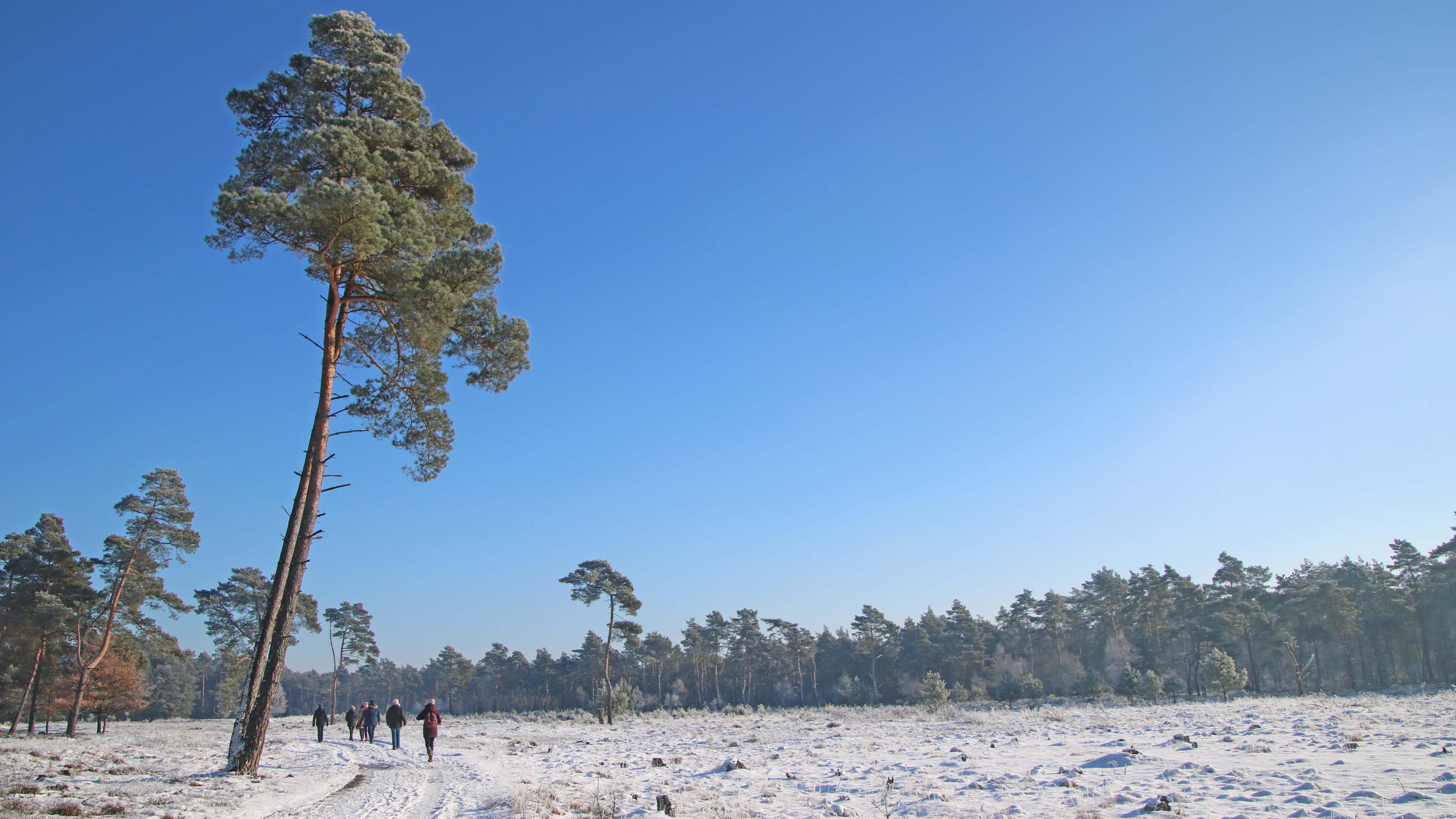 Winterwandern auf dem NORDPFAD