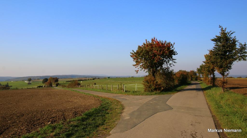 Weserhöhen_auf_dem_Weg_nach_Ovenhausen
