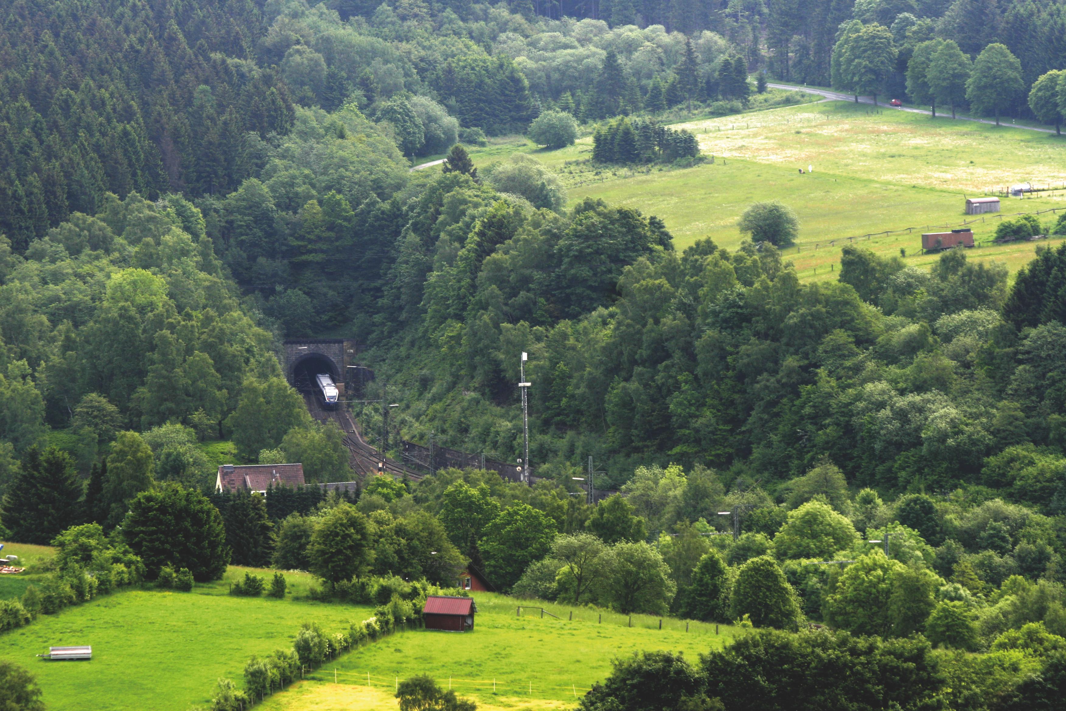Rehbergtunnel Altenbeken