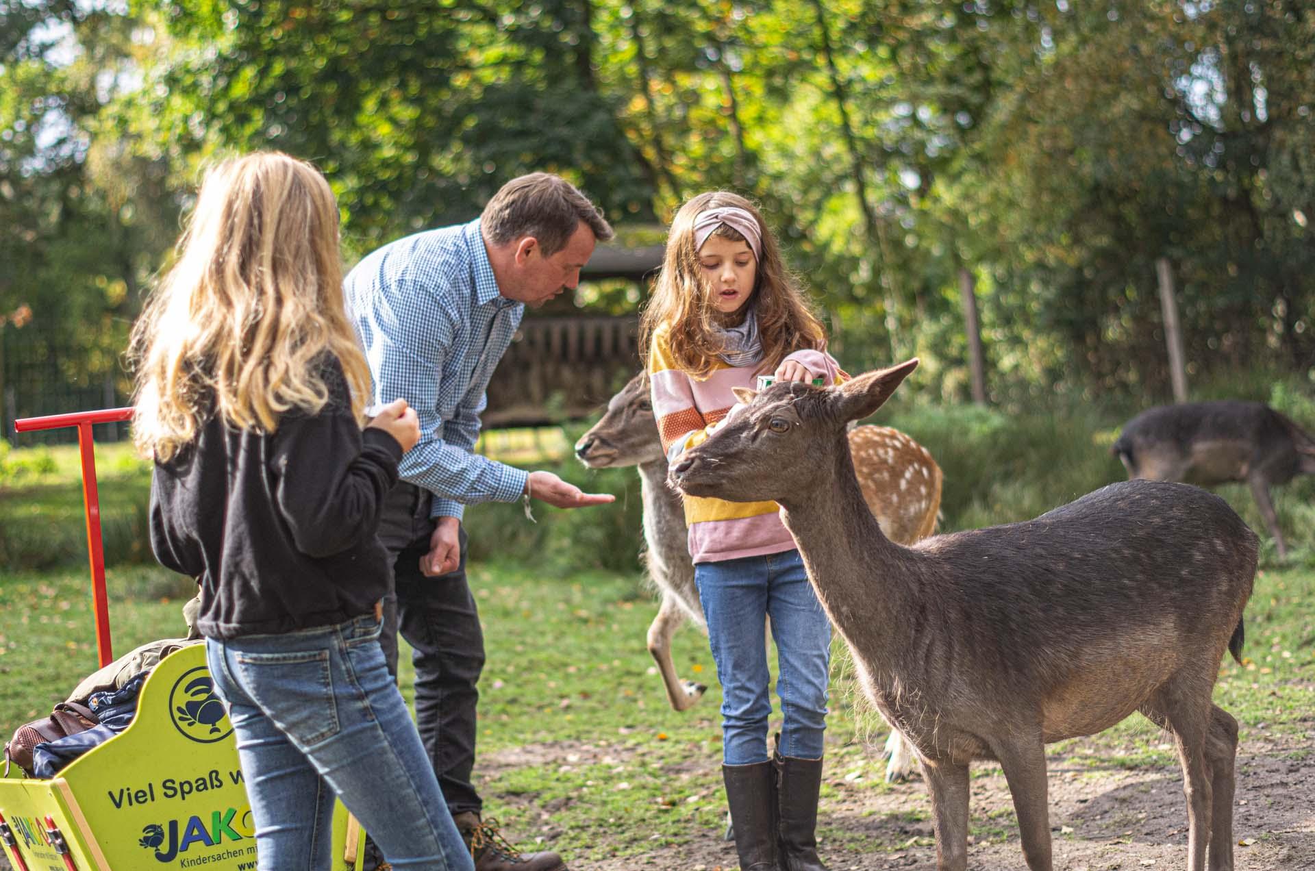 Wildpark Müden GmbH
