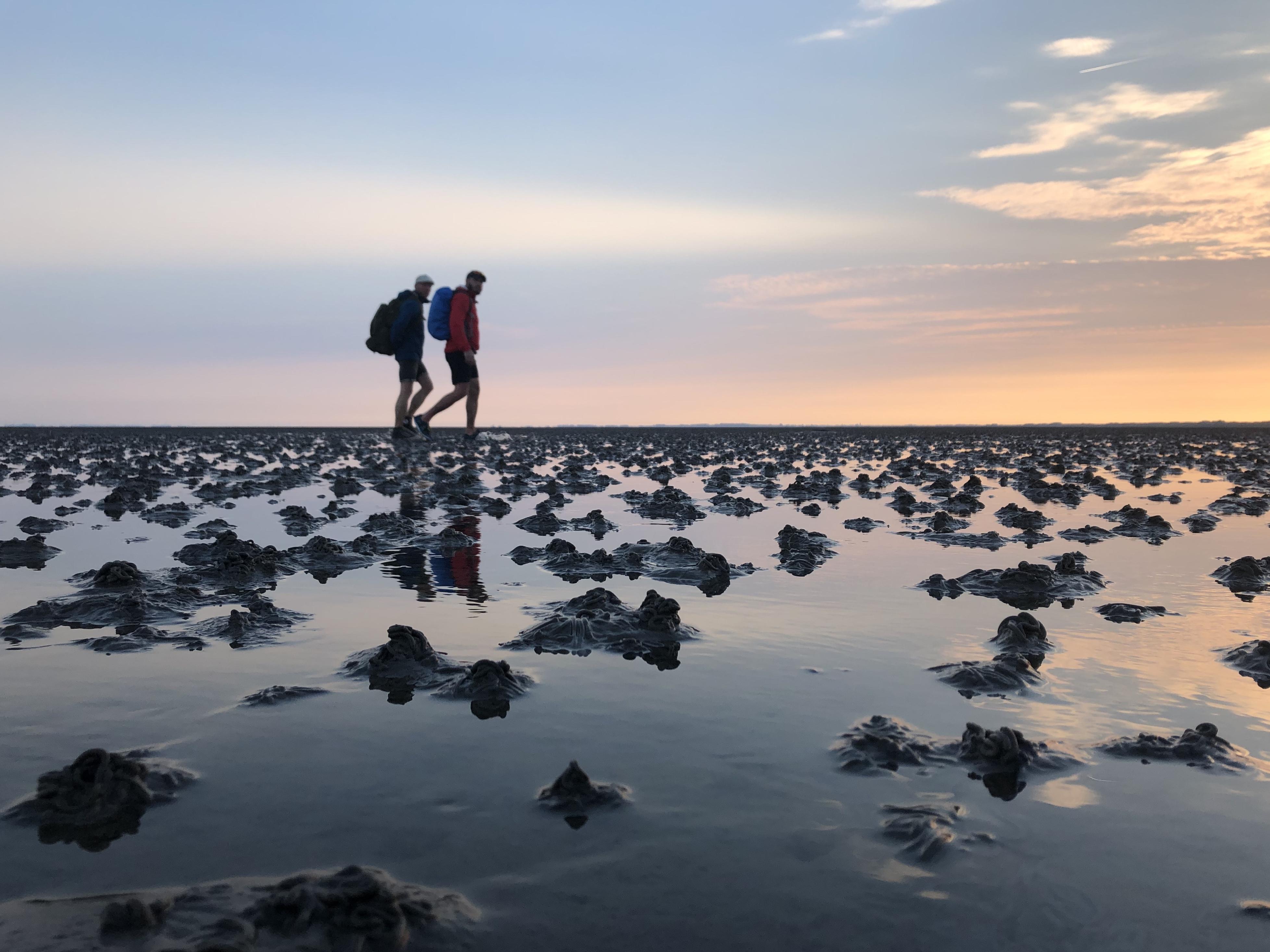 Vogelschutzinsel Minsener Oog - Wattquerung