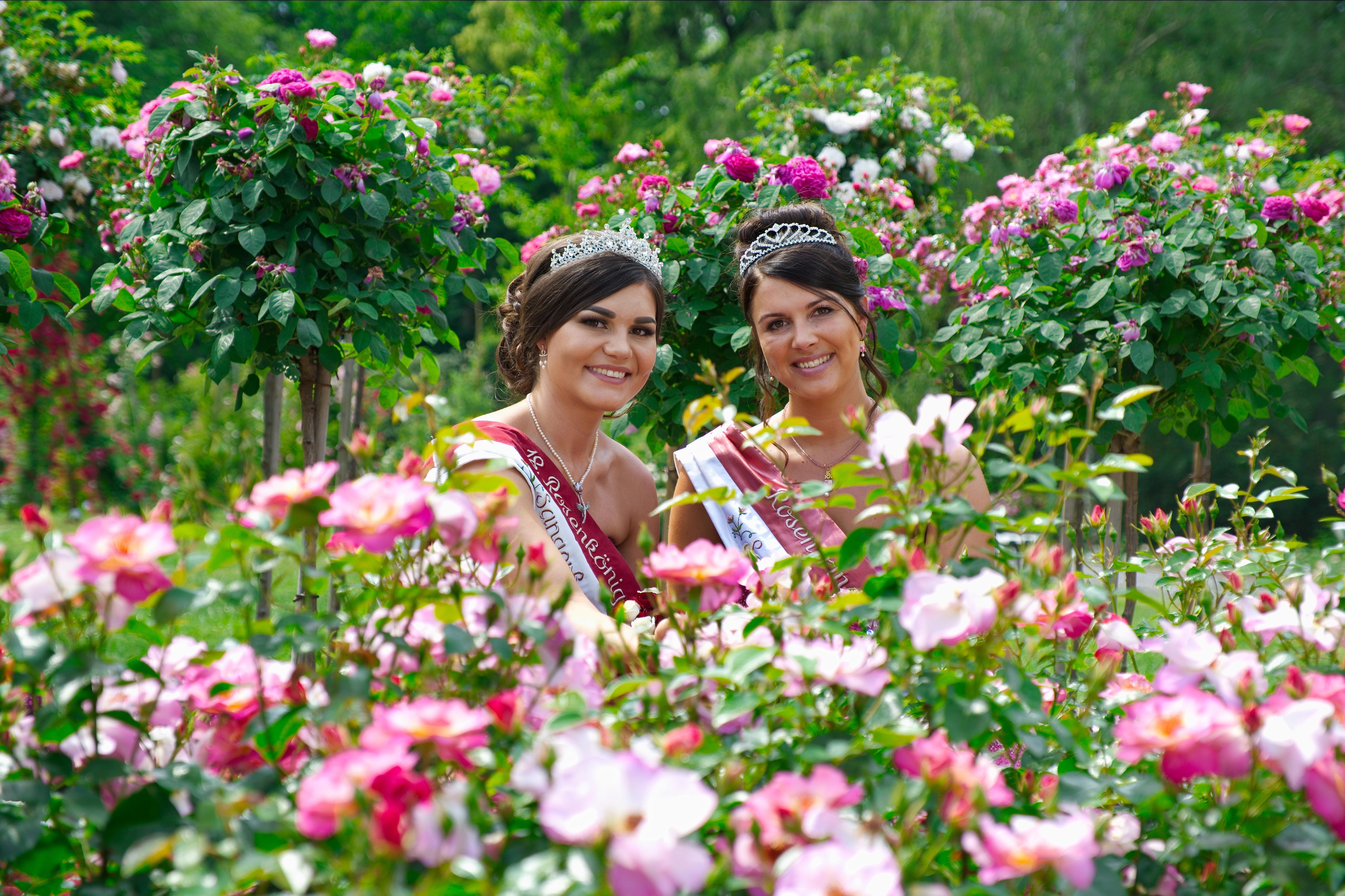 Rosenkönigin und -prinzessin hinter Rosen