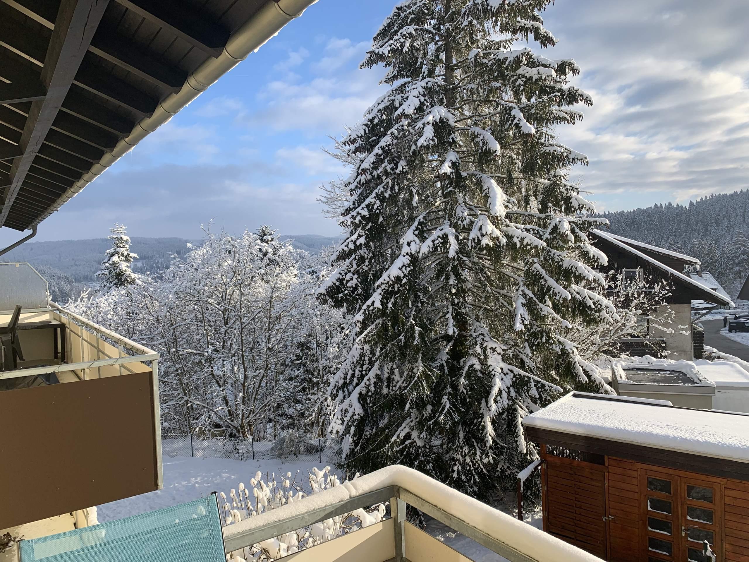 Ferienwohnung Windhausen - Harz Okerblick in Schulenberg - Blick vom Balkon im Winter