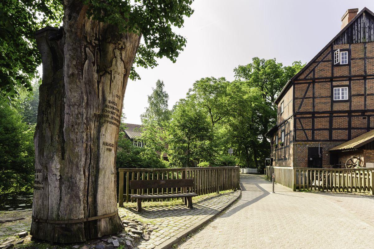 Blasek Eiche und Wassermühle