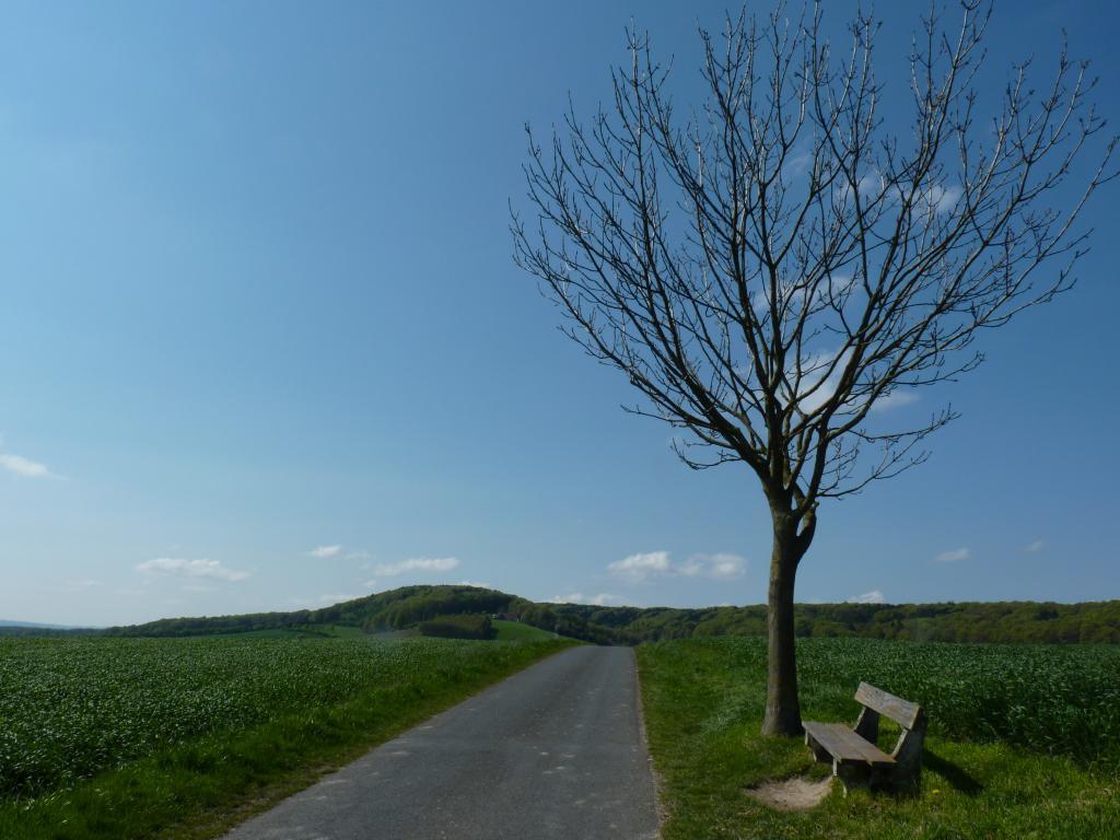 Panoramaweg über den Wehdemer Klei