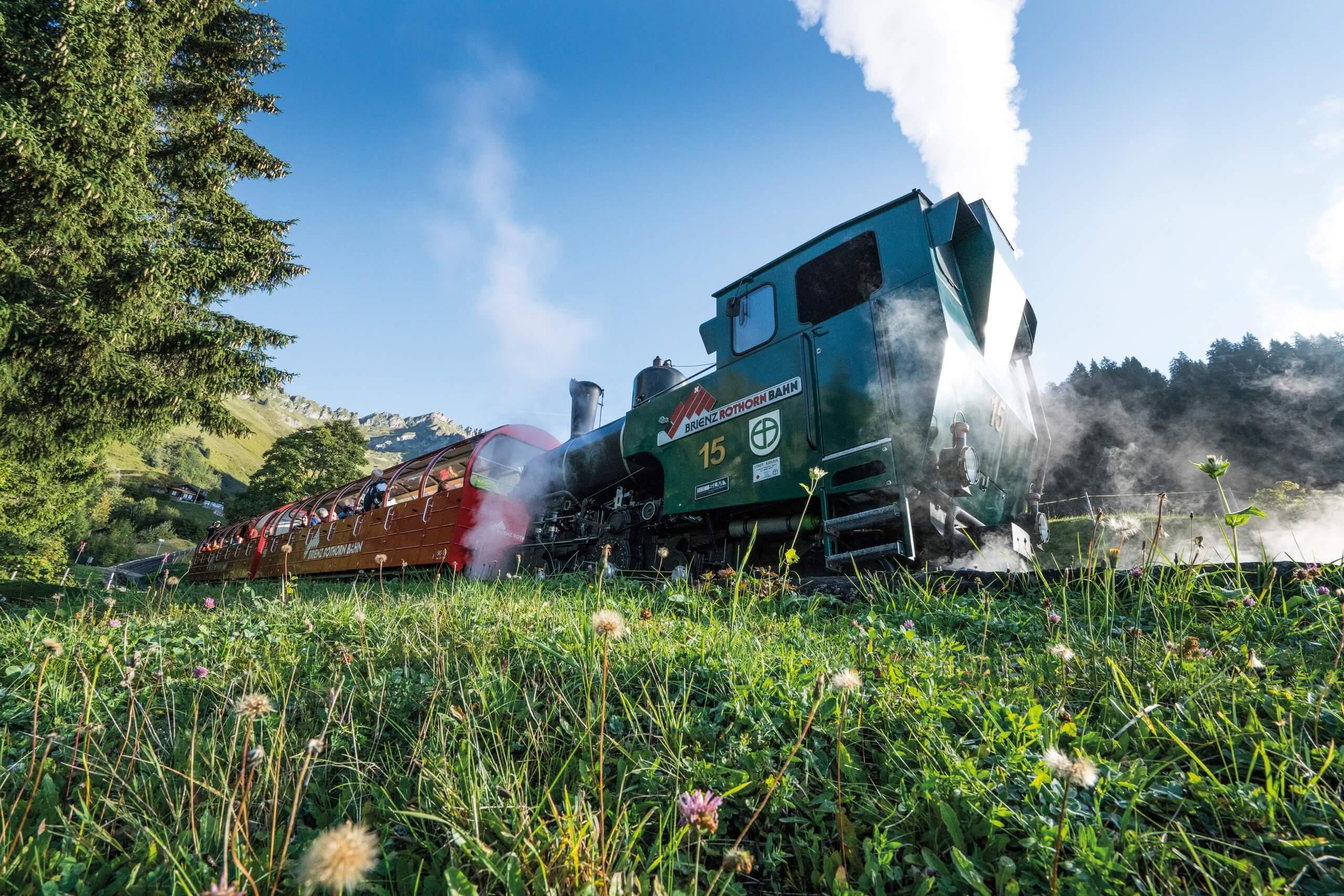 brienzer-rothornbahn-dampfbahn-wiese-sommer