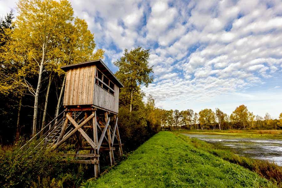 Aschauteiche auf dem Radweg Naturpark Südheide Tour