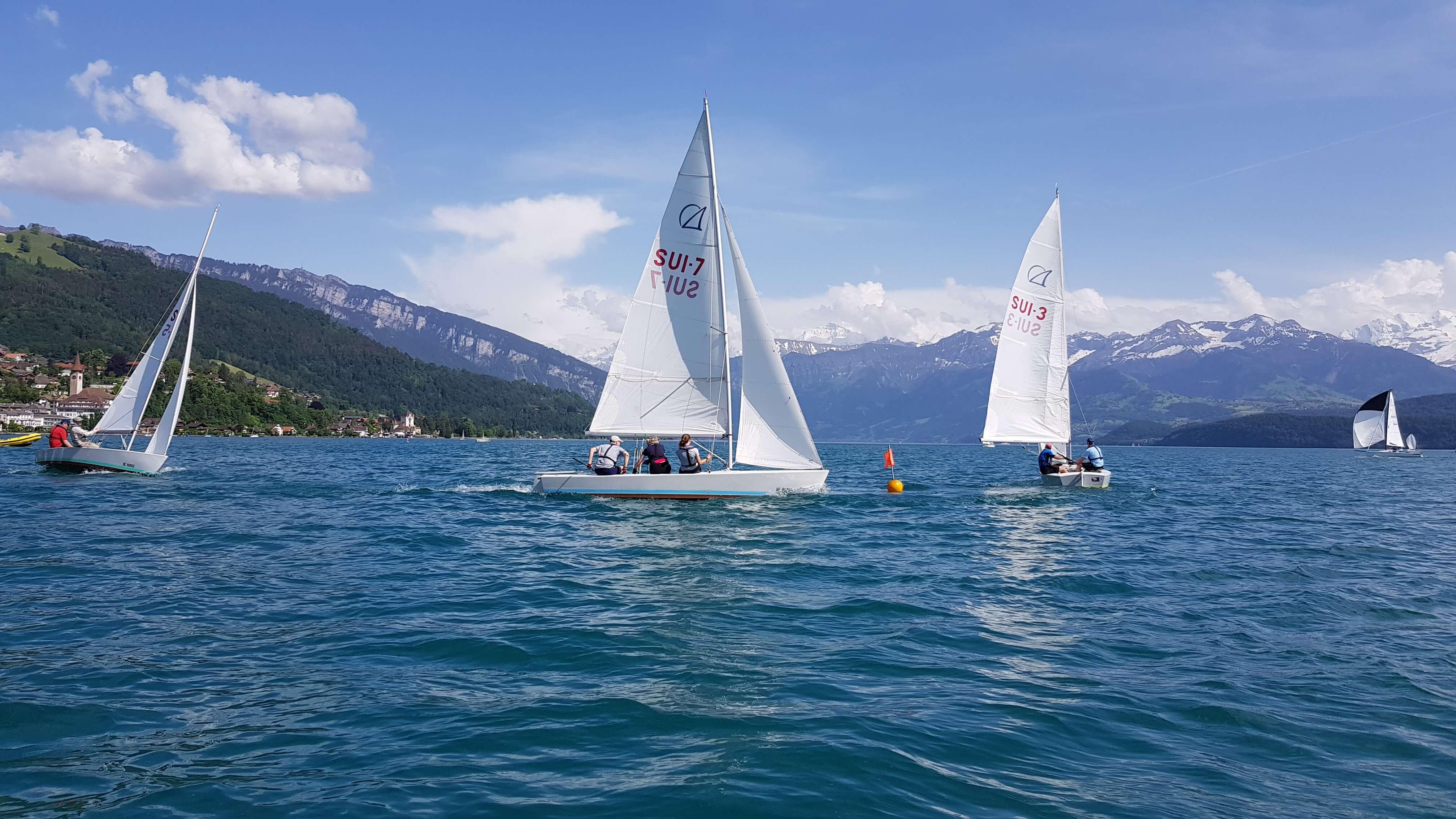 segelschule-thunersee-segelboote.jpg