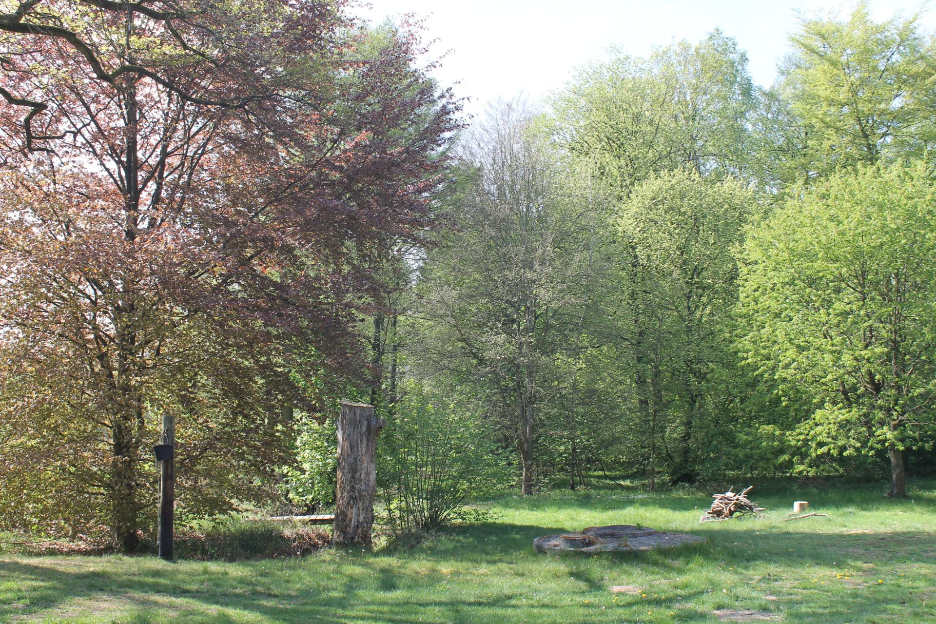 Garten und Grundstück