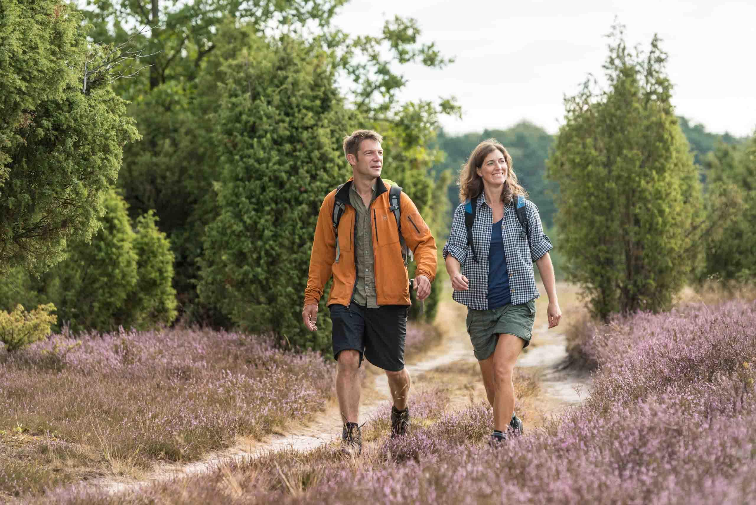 Wandern im Wacholderwald bei Schmarbeck