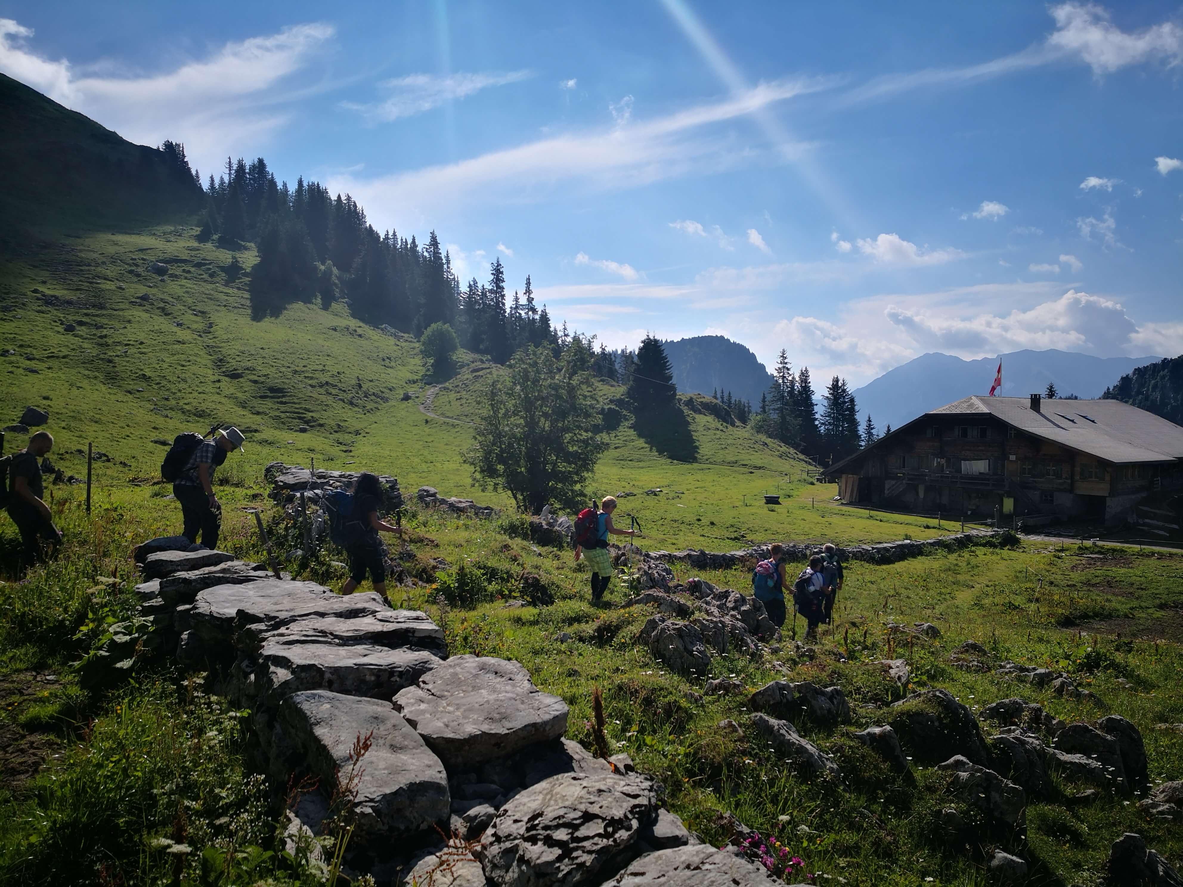 Geführte Wanderungen über Stock und Stein