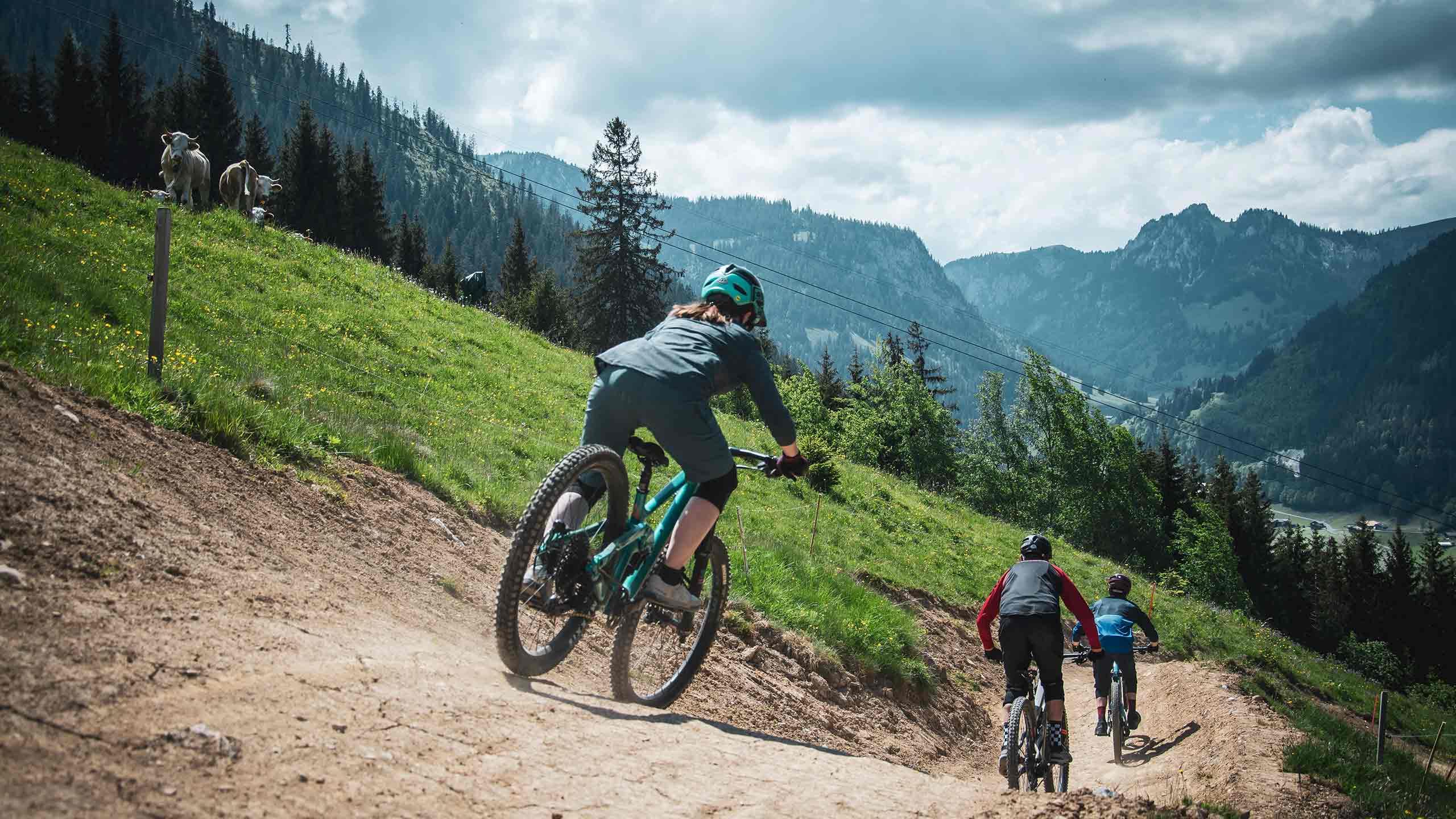 downhill-bikepark-wiriehorn-biker-fahren-richtung-tal.jpg