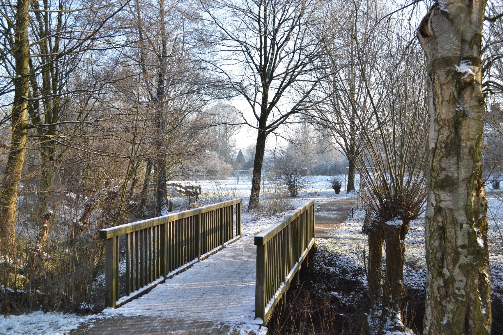 Brücke am Grünzug Mühlenwiese