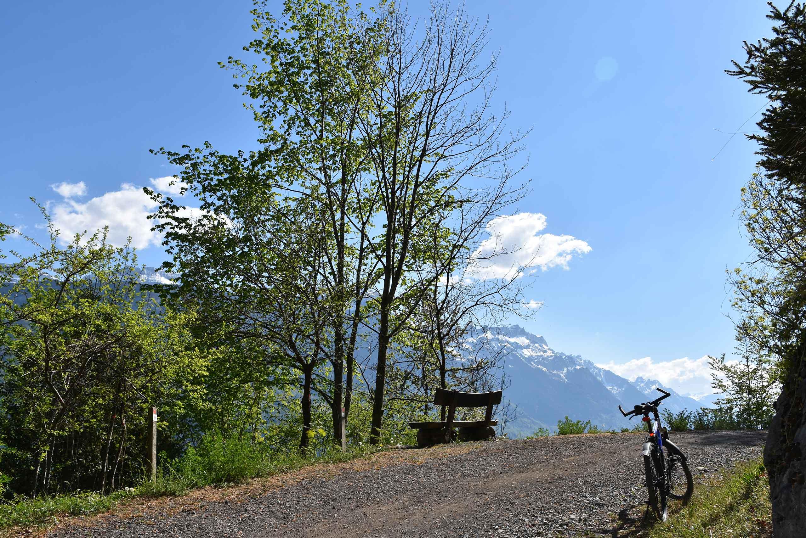 wanderweg-bikeweg-brienz-ebligen-haengebruecke-oberried.jpg