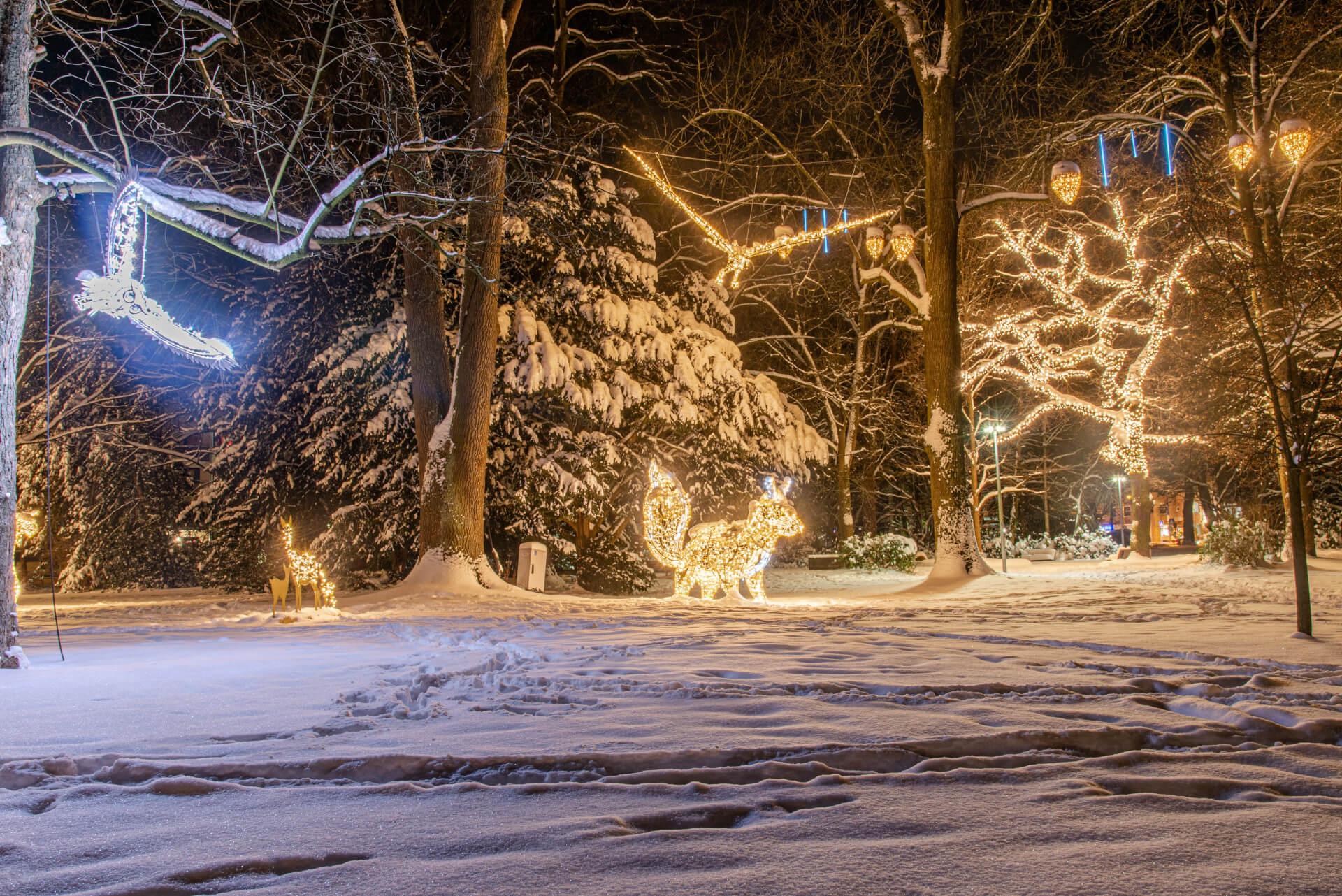 Lichterzauber im Schnee, Wallanlage