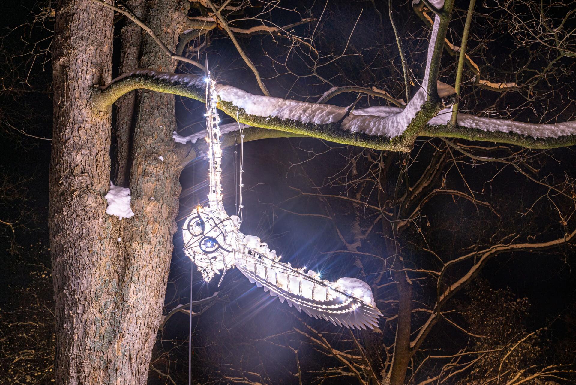 Lichterzauber im Schnee, Eule