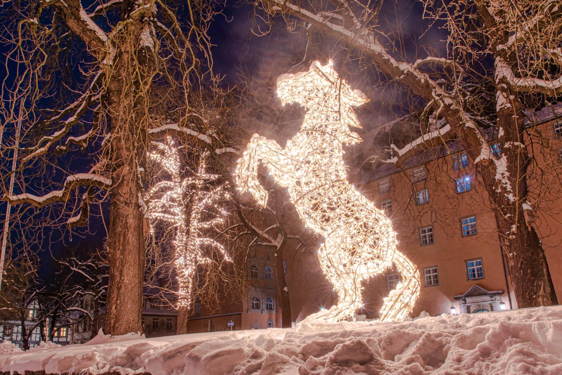 Lichterzauber im Schnee, Pferd