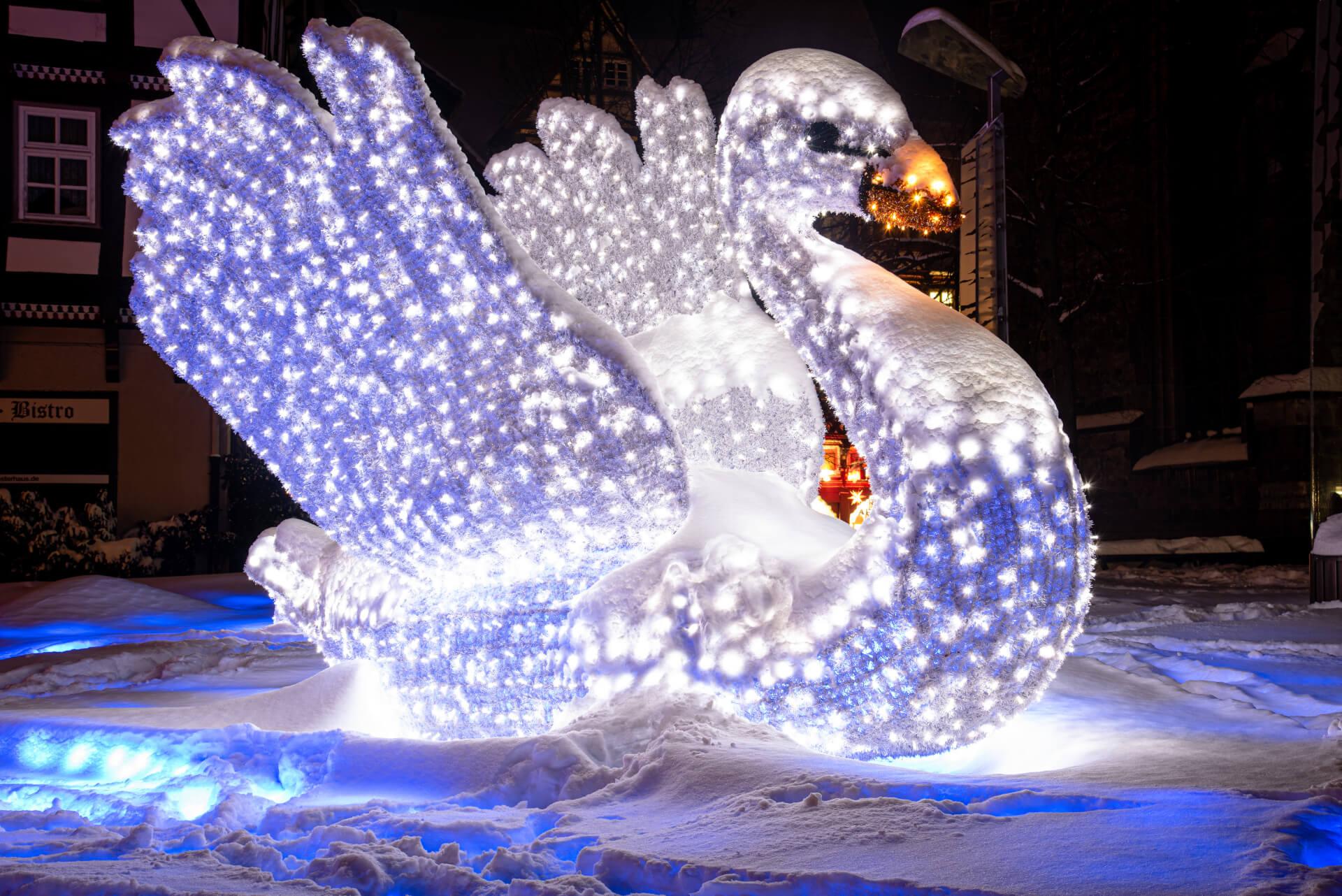 Lichterzauber im Schnee, Schwan