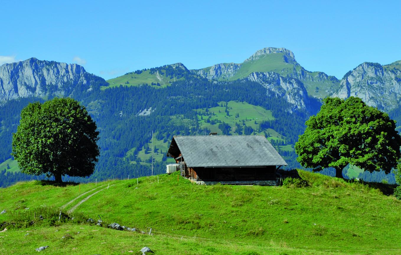 Hütte auf der Alp Tschuggen