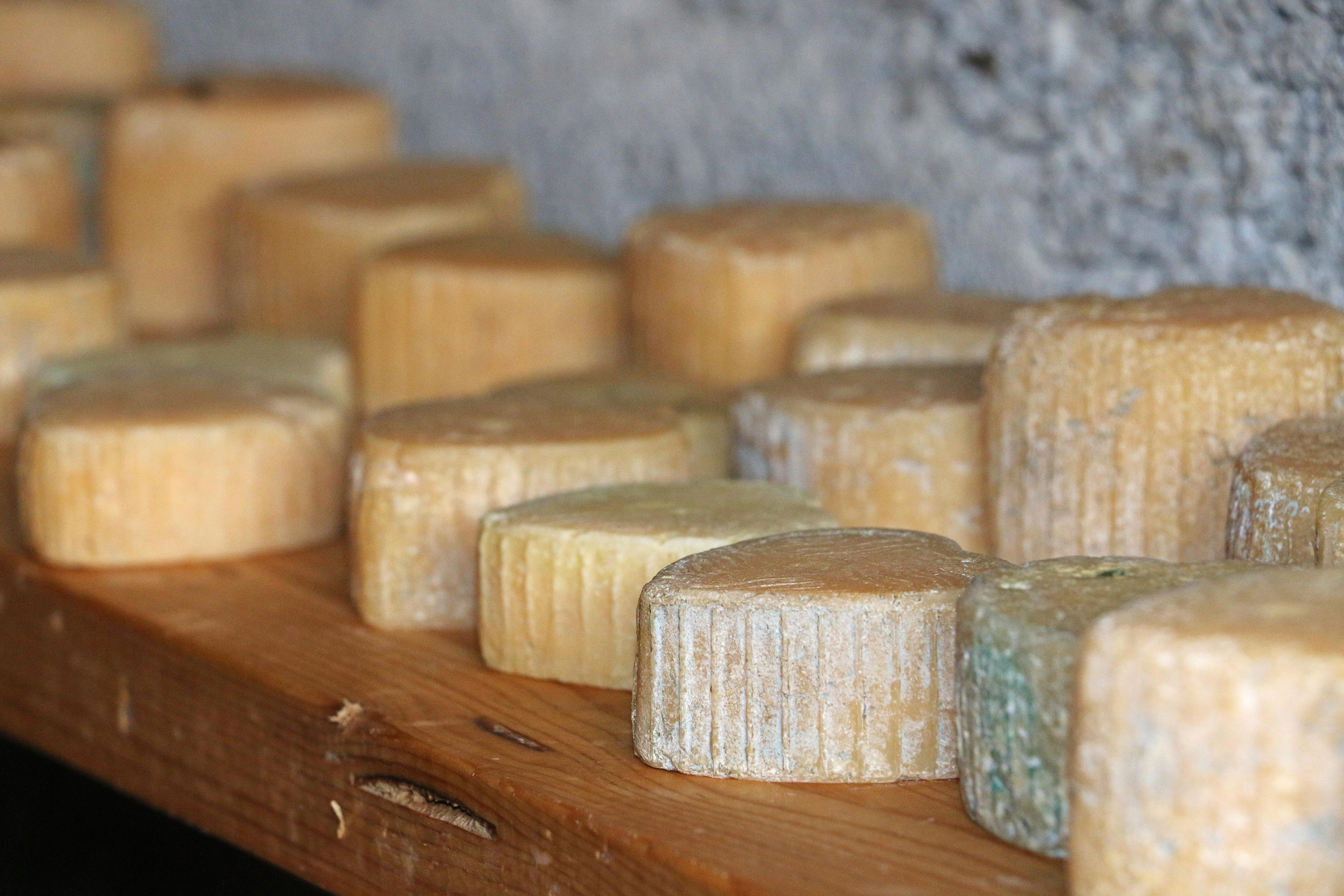 Käsekeller auf der Alp Tschuggen