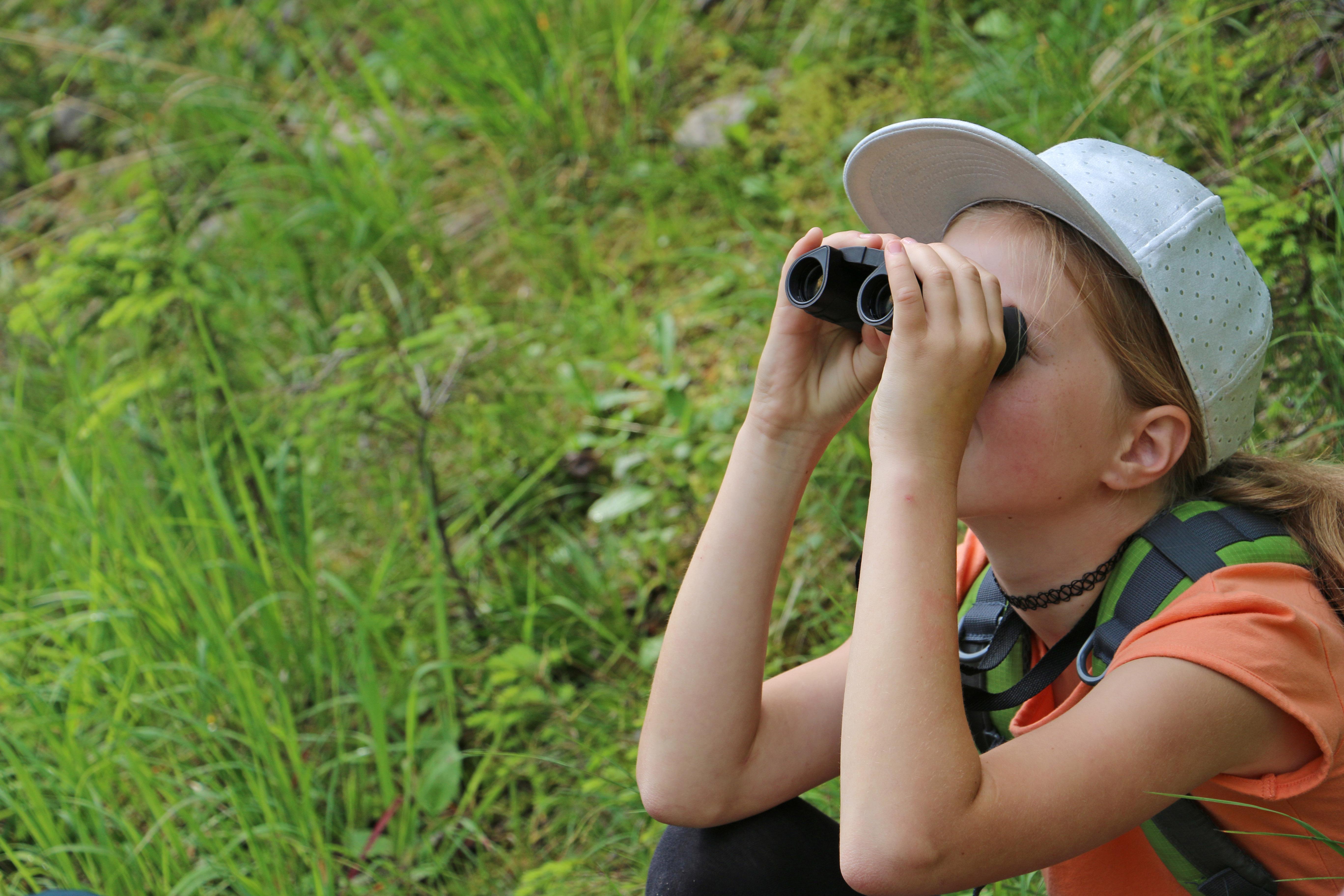 Alpentiere durch ein Fernglas beobachten