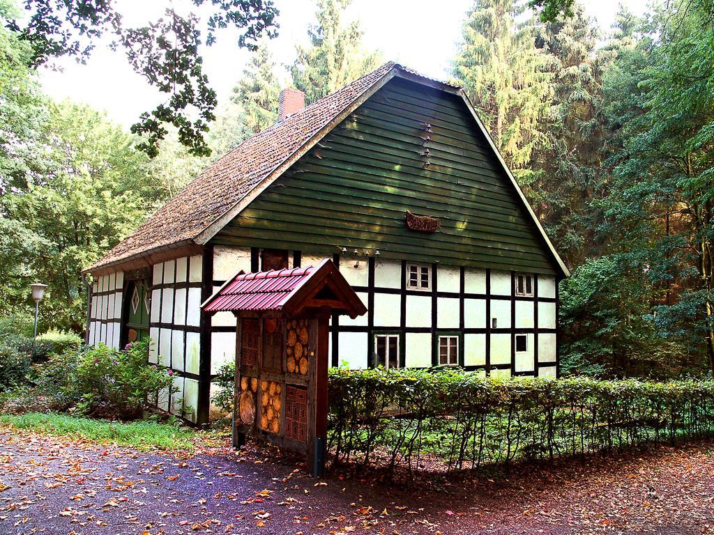 Katzenholz - Hühnerhaus