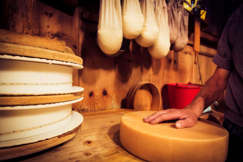 Käseherstellung mit Herzblut