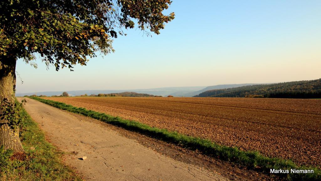Weserhöhen_Blick_ins_Wesertal_rechts_im_Hintergrund_die_Spitze_des_Wildbergs