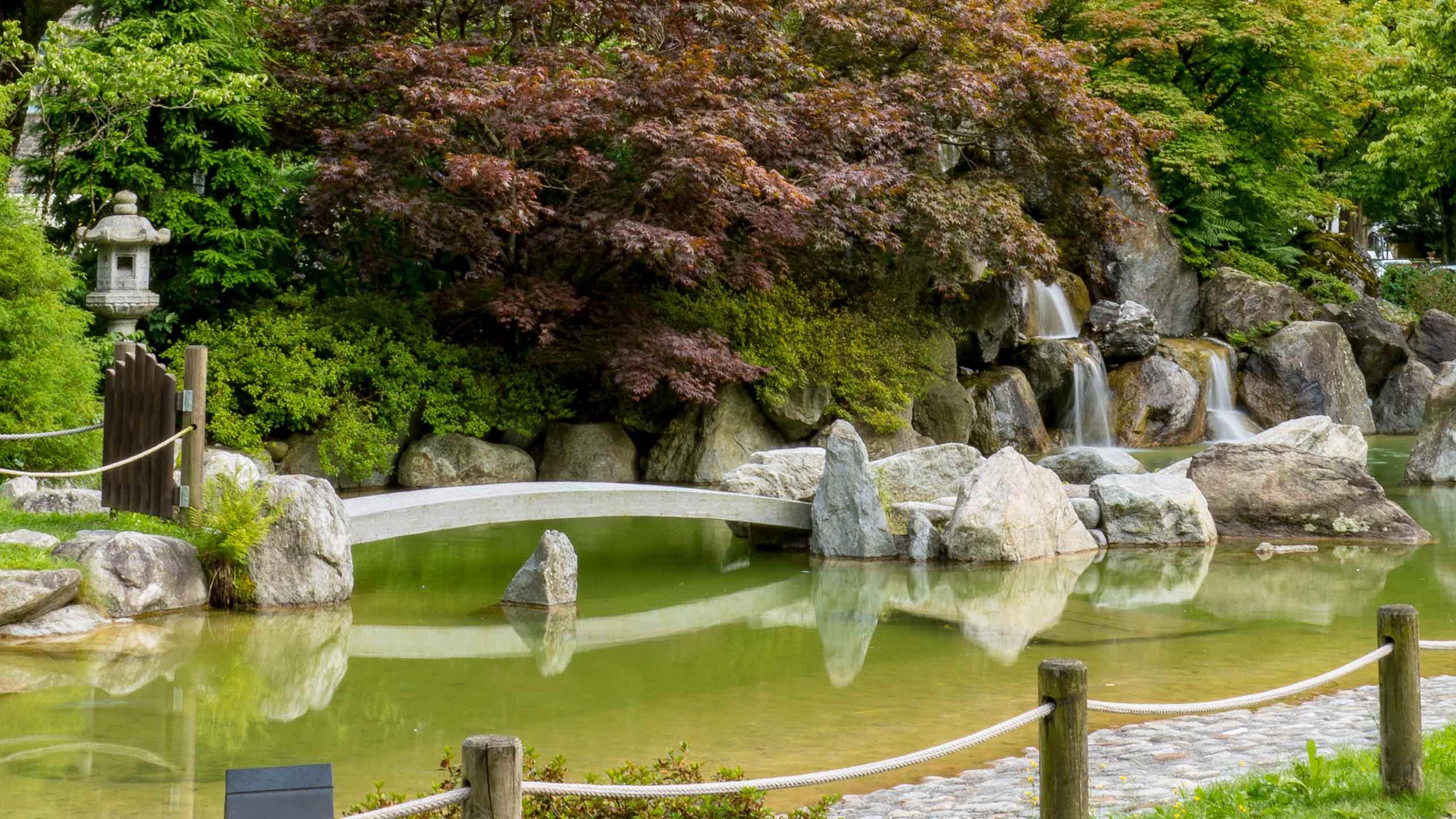 japanischer-garten-interlaken-teich-fruehling.jpg