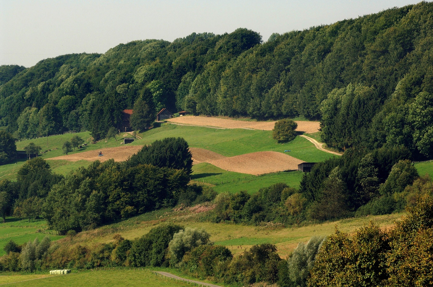 Landschaft in Meerhof