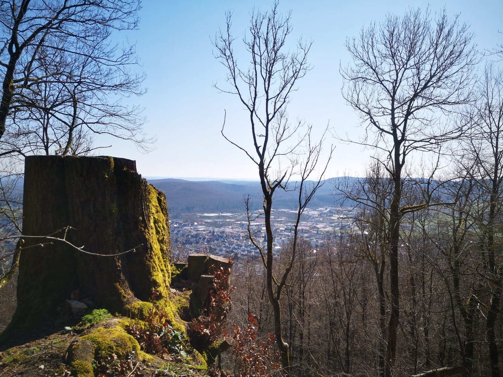 Blick von der Iburg Ruine Bad Driburg