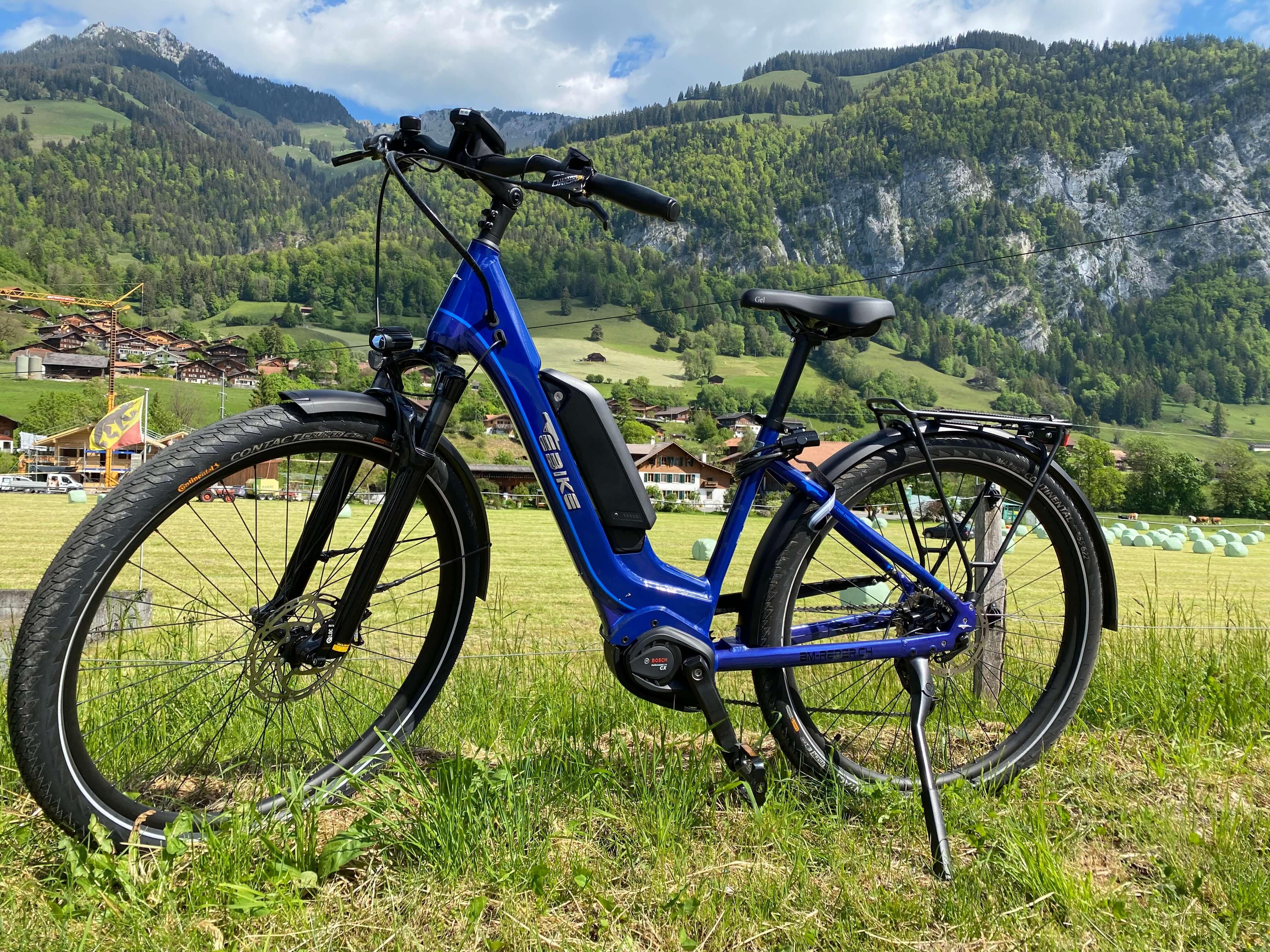 Bikes der Marke «EBIKE»