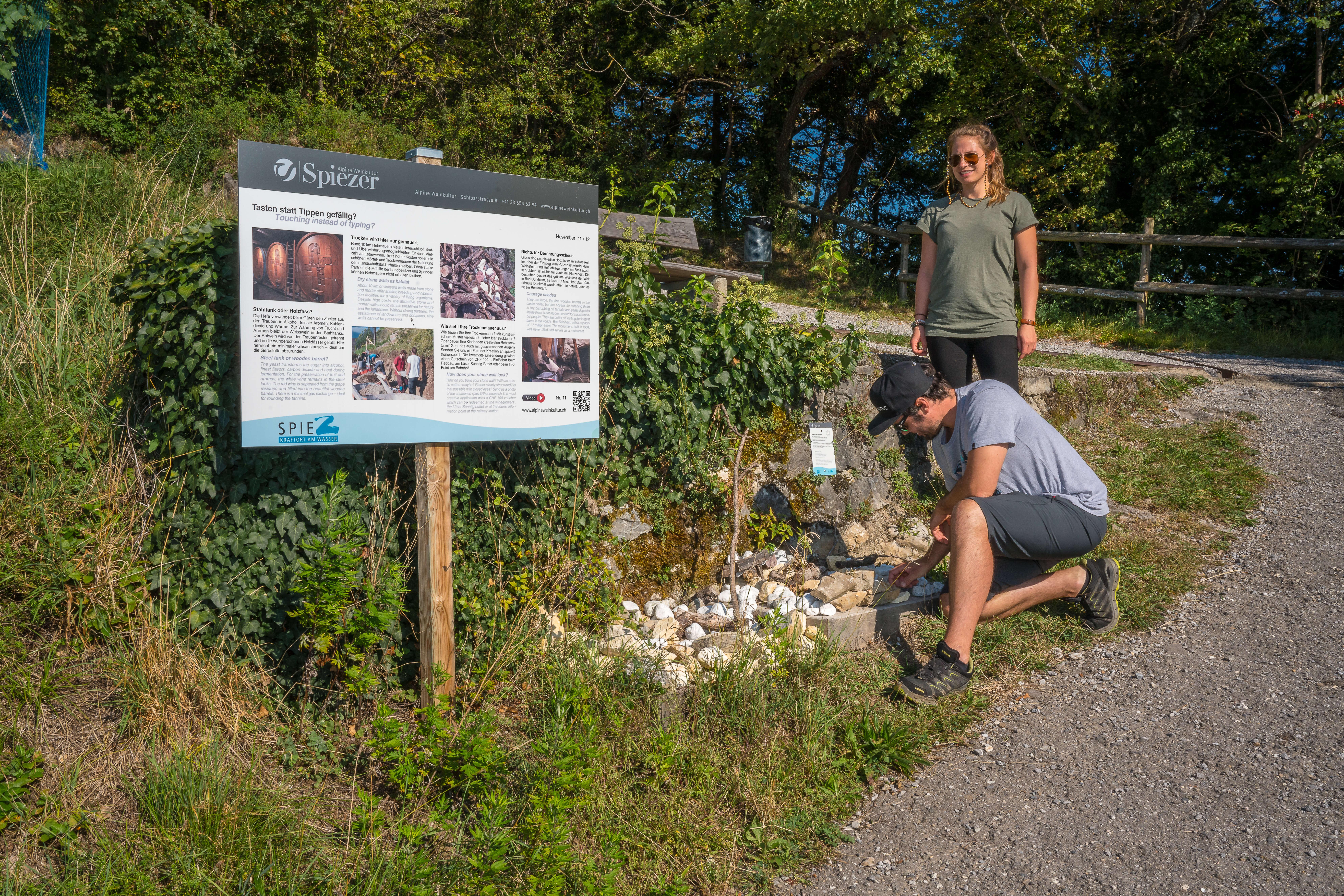 wandern-erlebnispfad am rebberg-steinmauer-spiez-sommer.jpg