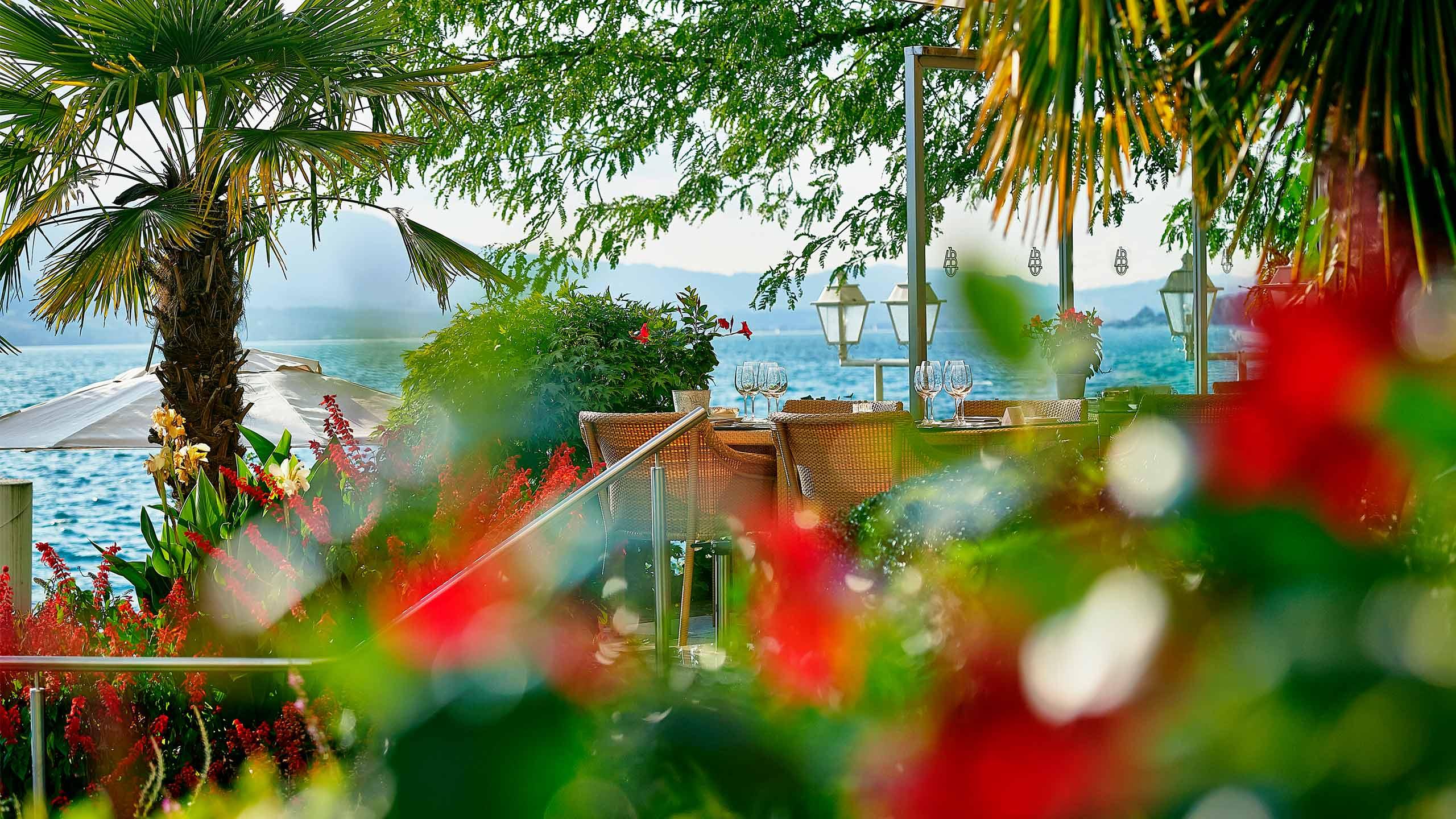 beatus-orangerie-piano-bar-terrasse-sommer-thunersee-pflanzen.jpg