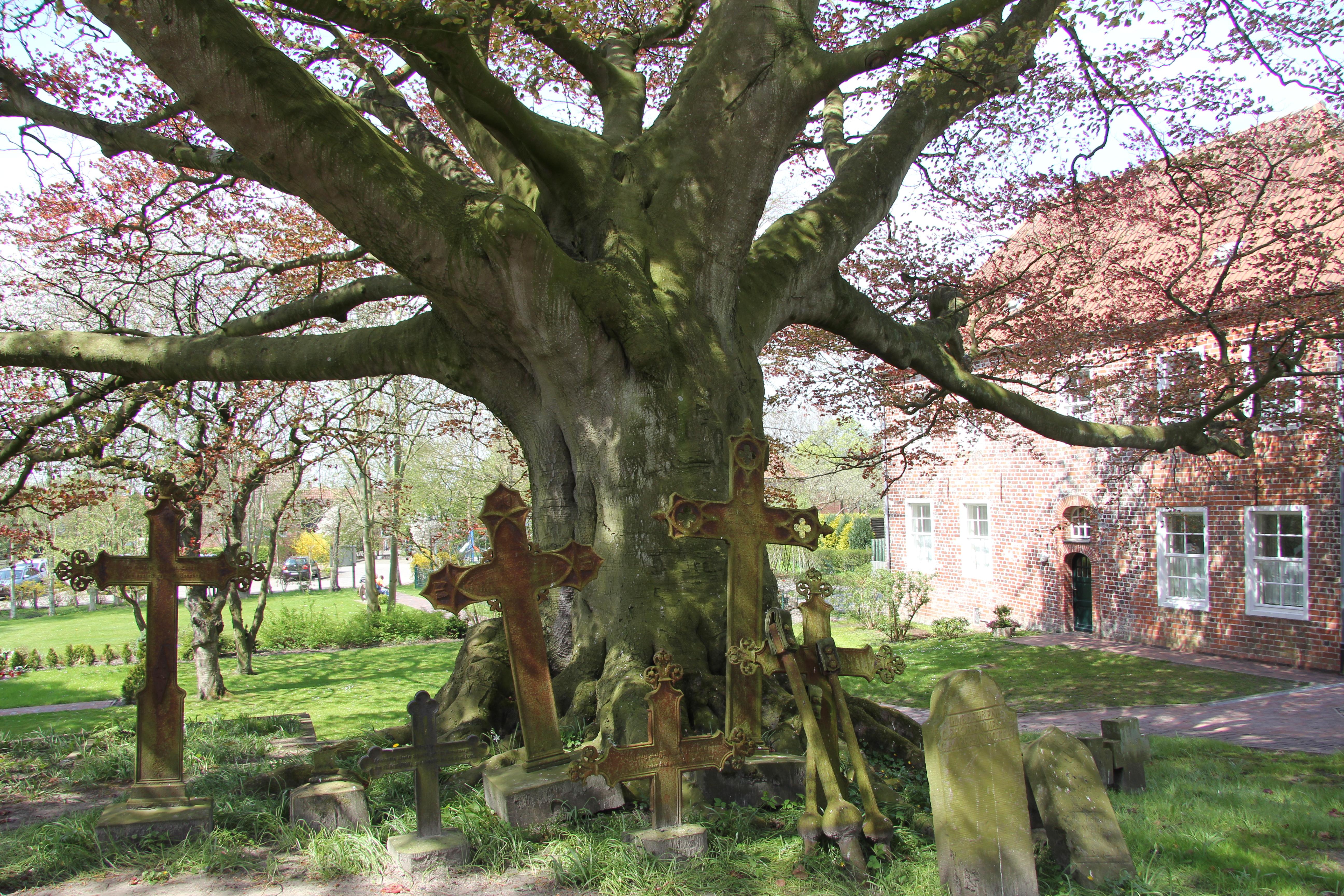 Friedhof Dornum.JPG