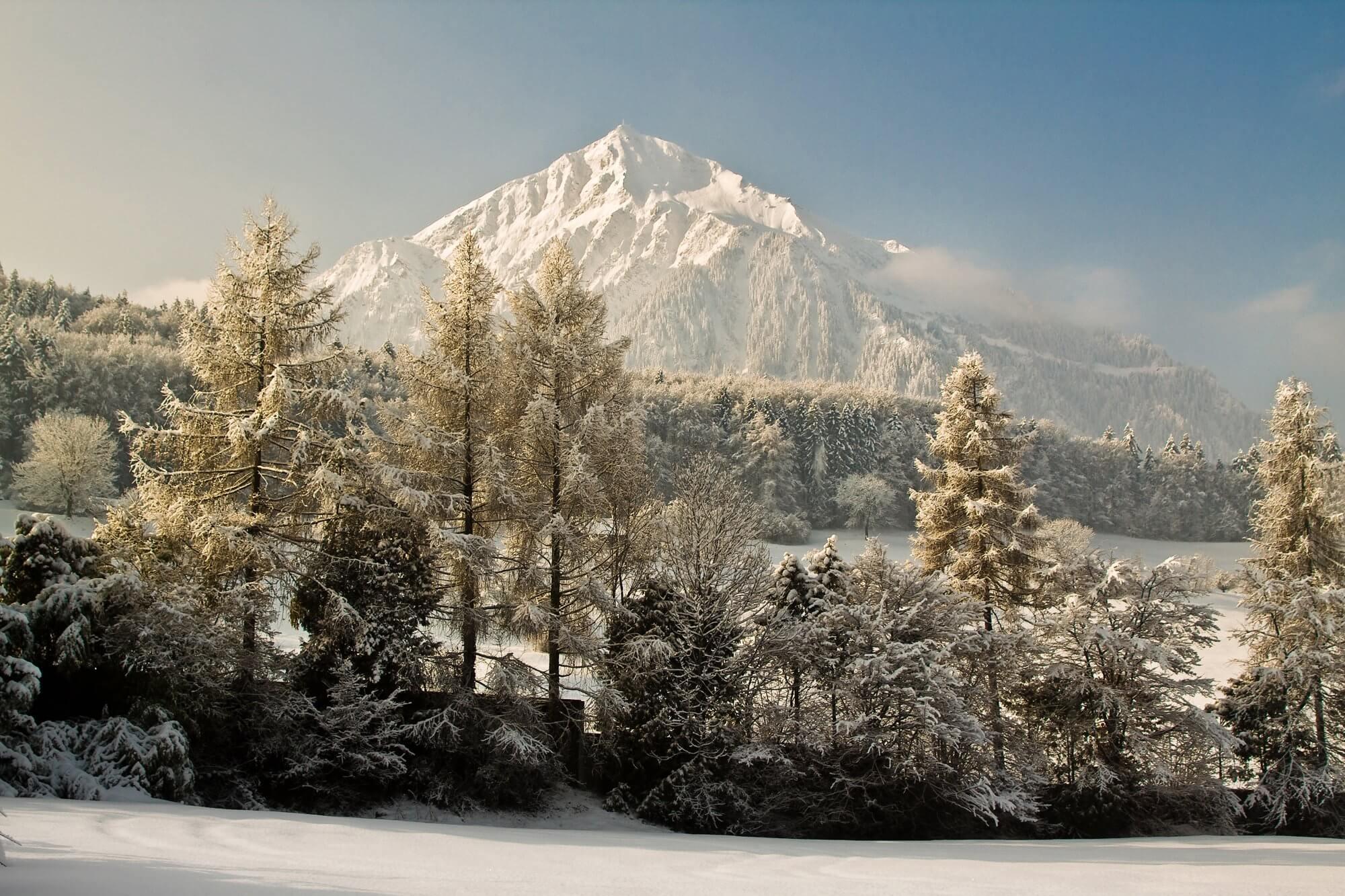 niesen-verschneit-winter.jpg