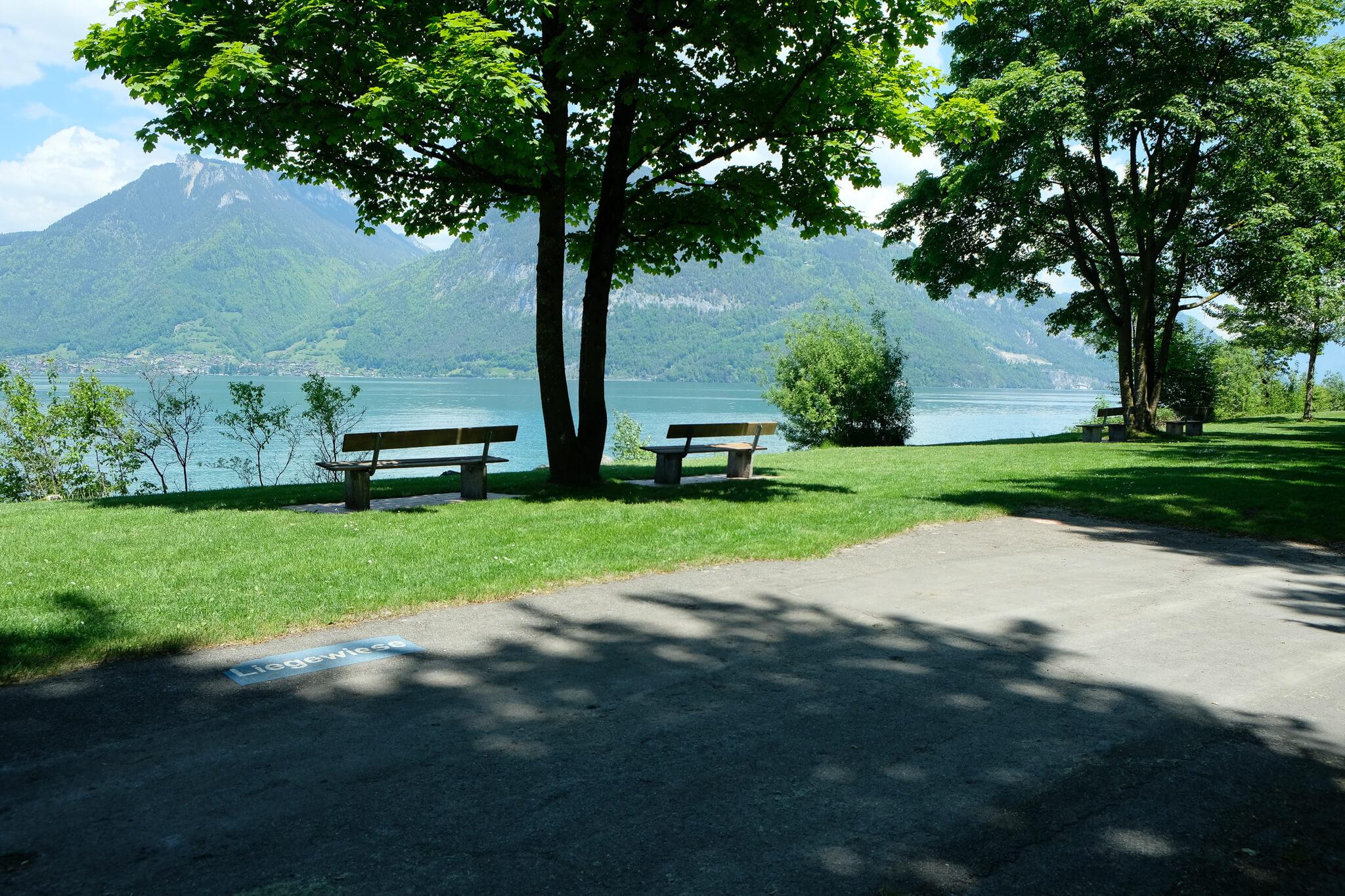 badeplatz-blue-turtle-faulensee-sommer (1).jpg