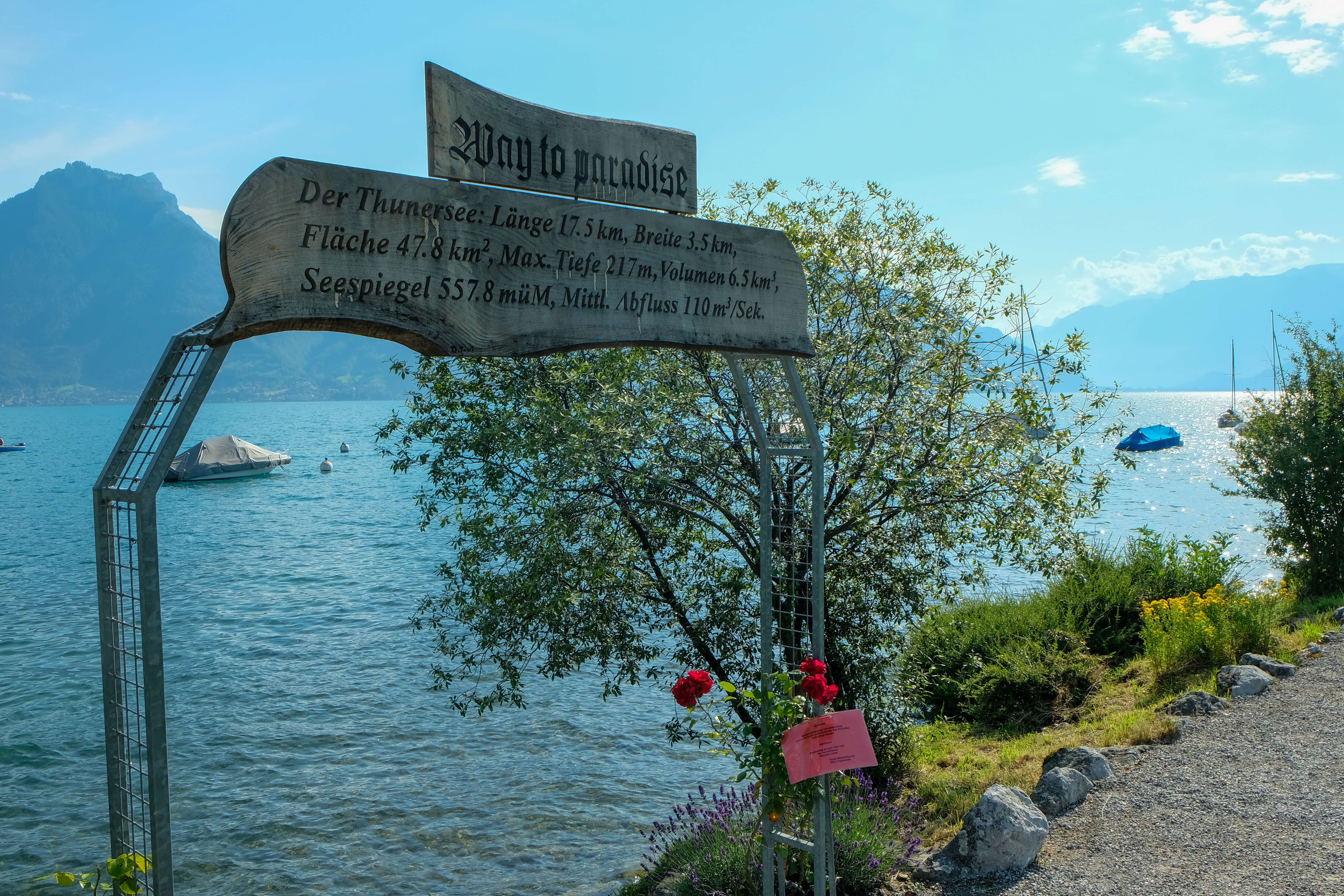 standort-faulensee-way-to-paradise-sommer-faulensee.jpg