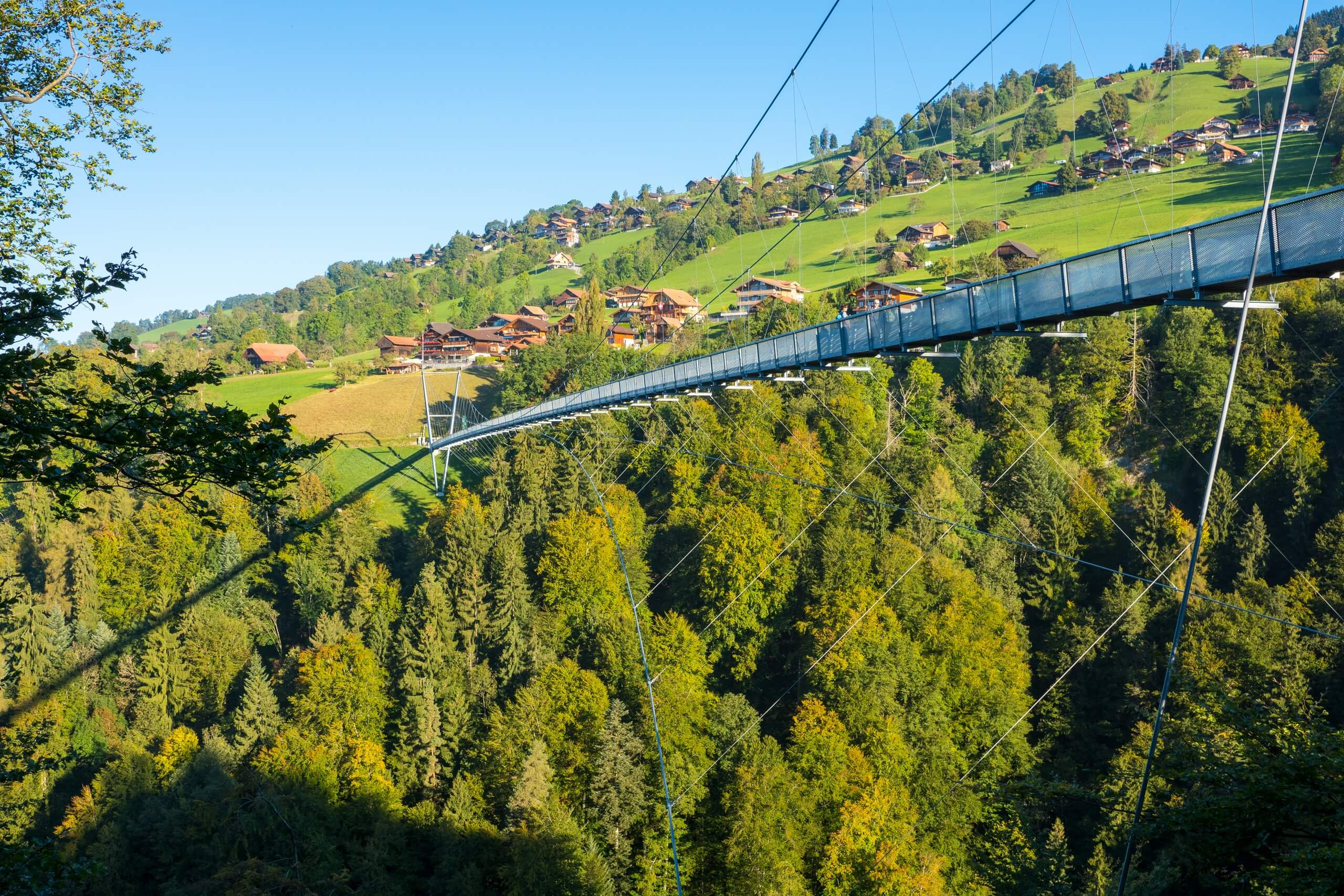 sigriswil-panorama-bruecke-sommer