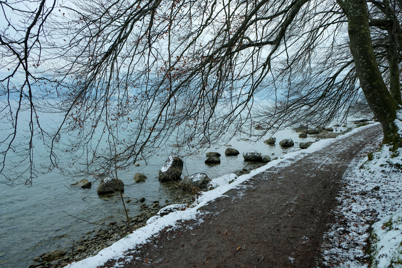 wandern-strandweg-spiez-faulensee-winter.jpg